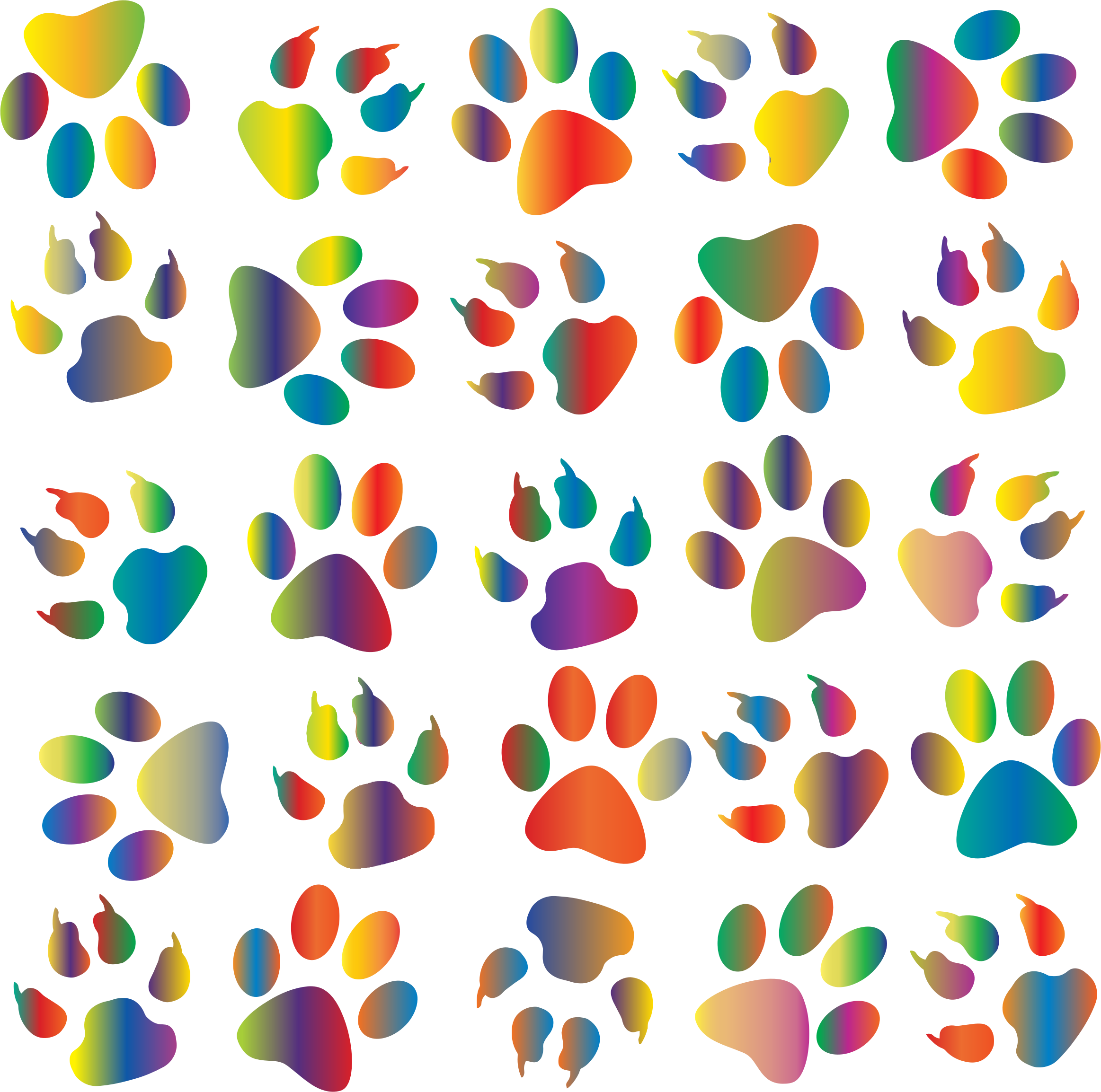 Bear Wall Stickers Clipart Colorful Paw Prints Pattern Background