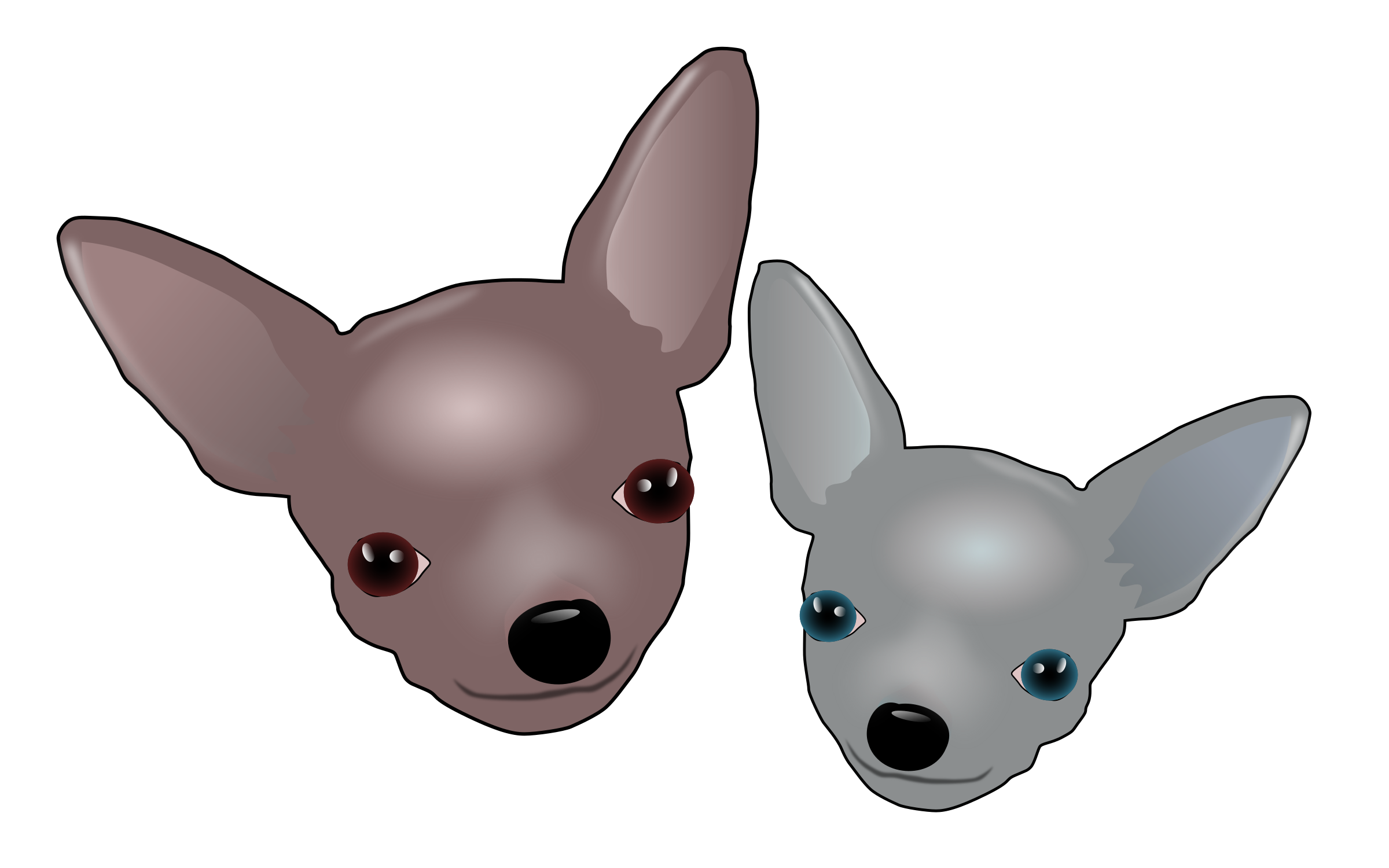 Two Chihuahuas by baroquon
