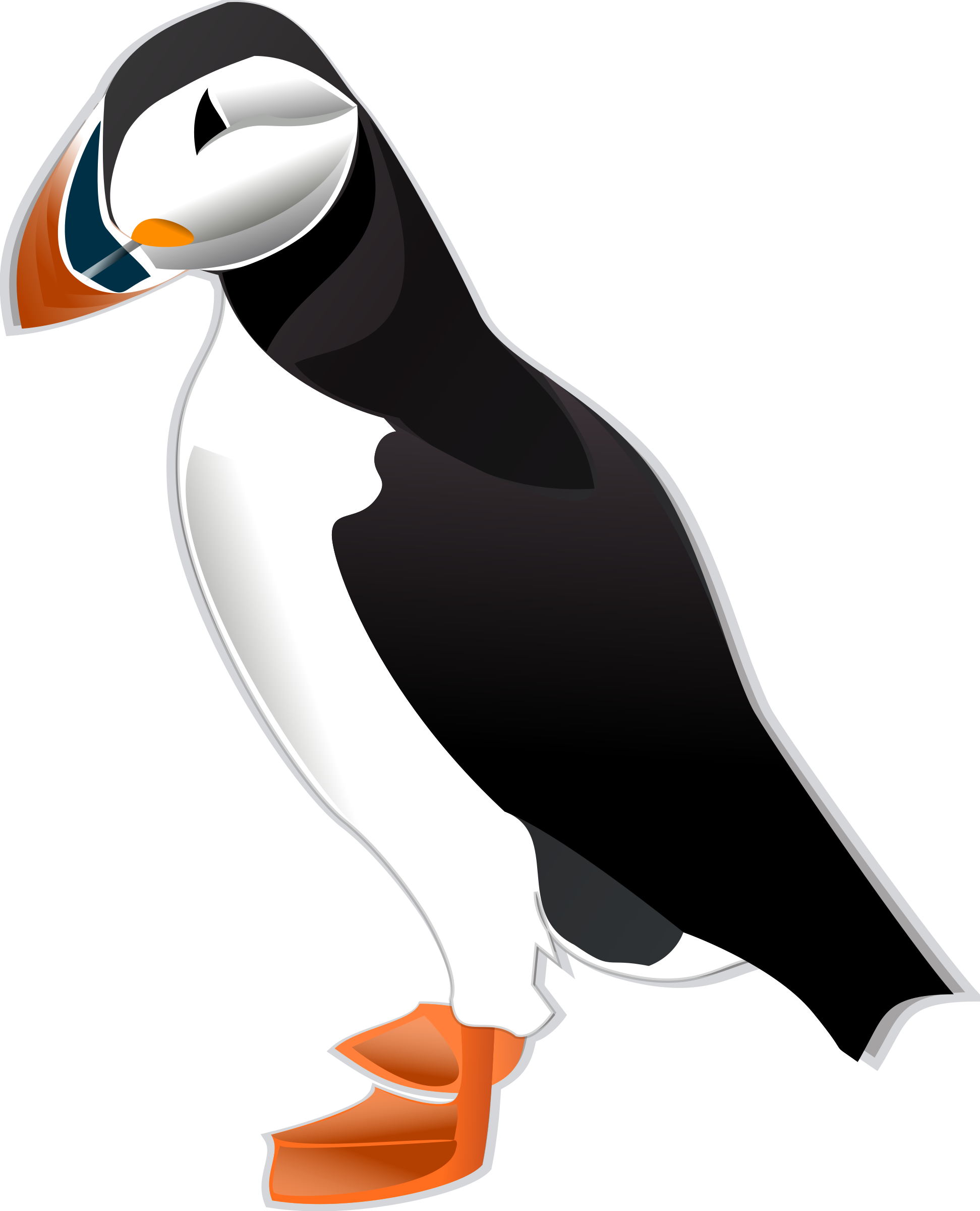 Puffin by Anonymous