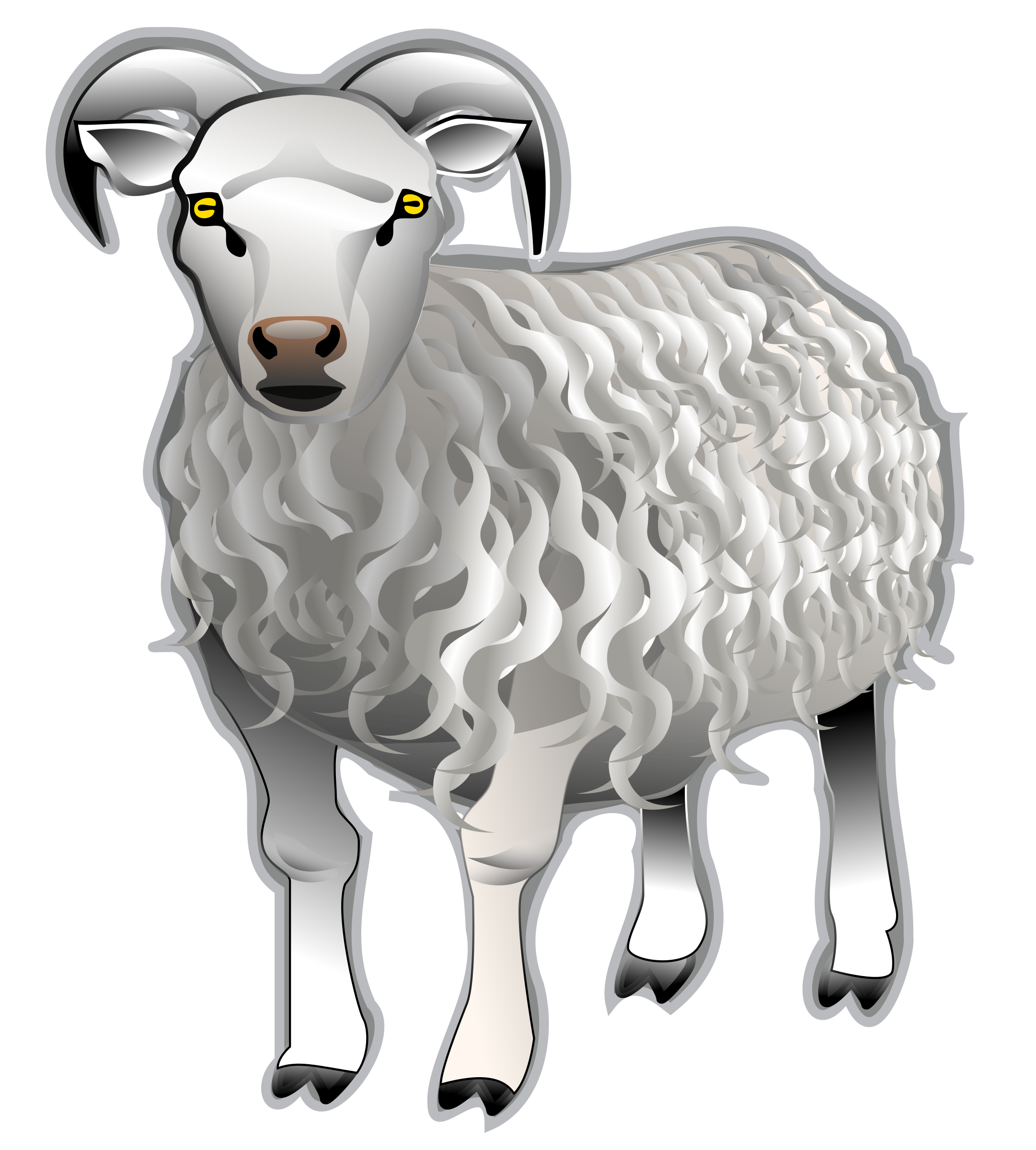 Sheep by Anonymous