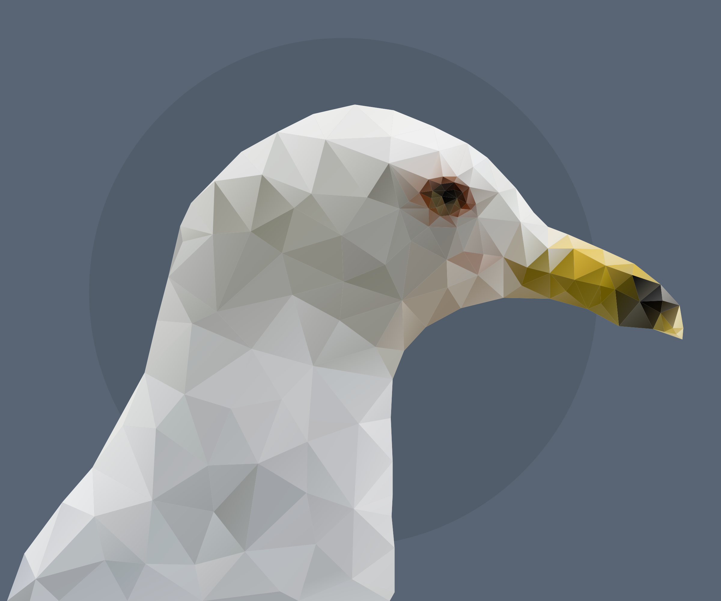 Low Poly Sea Gull by GDJ