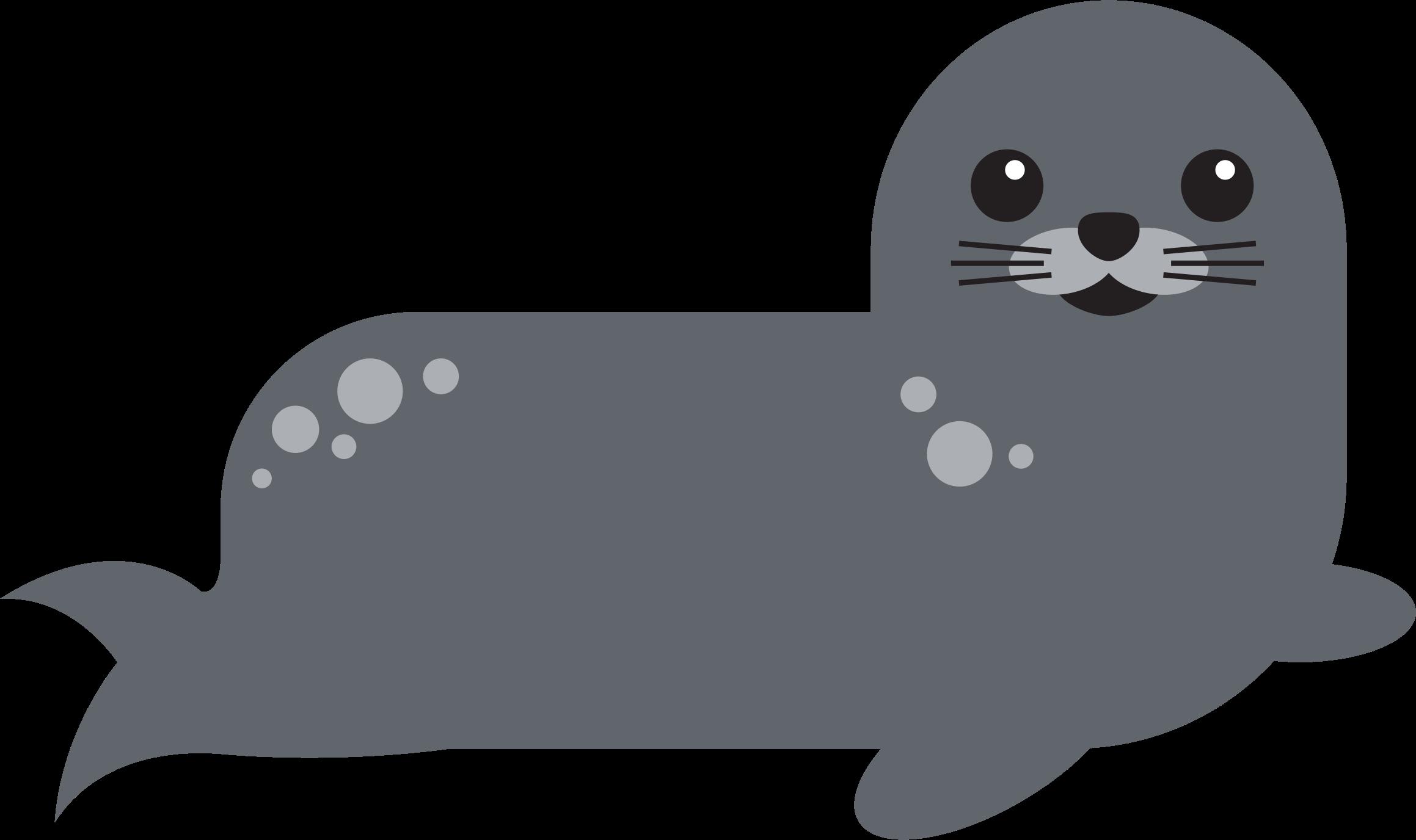 Harbor Seal 2 by GDJ