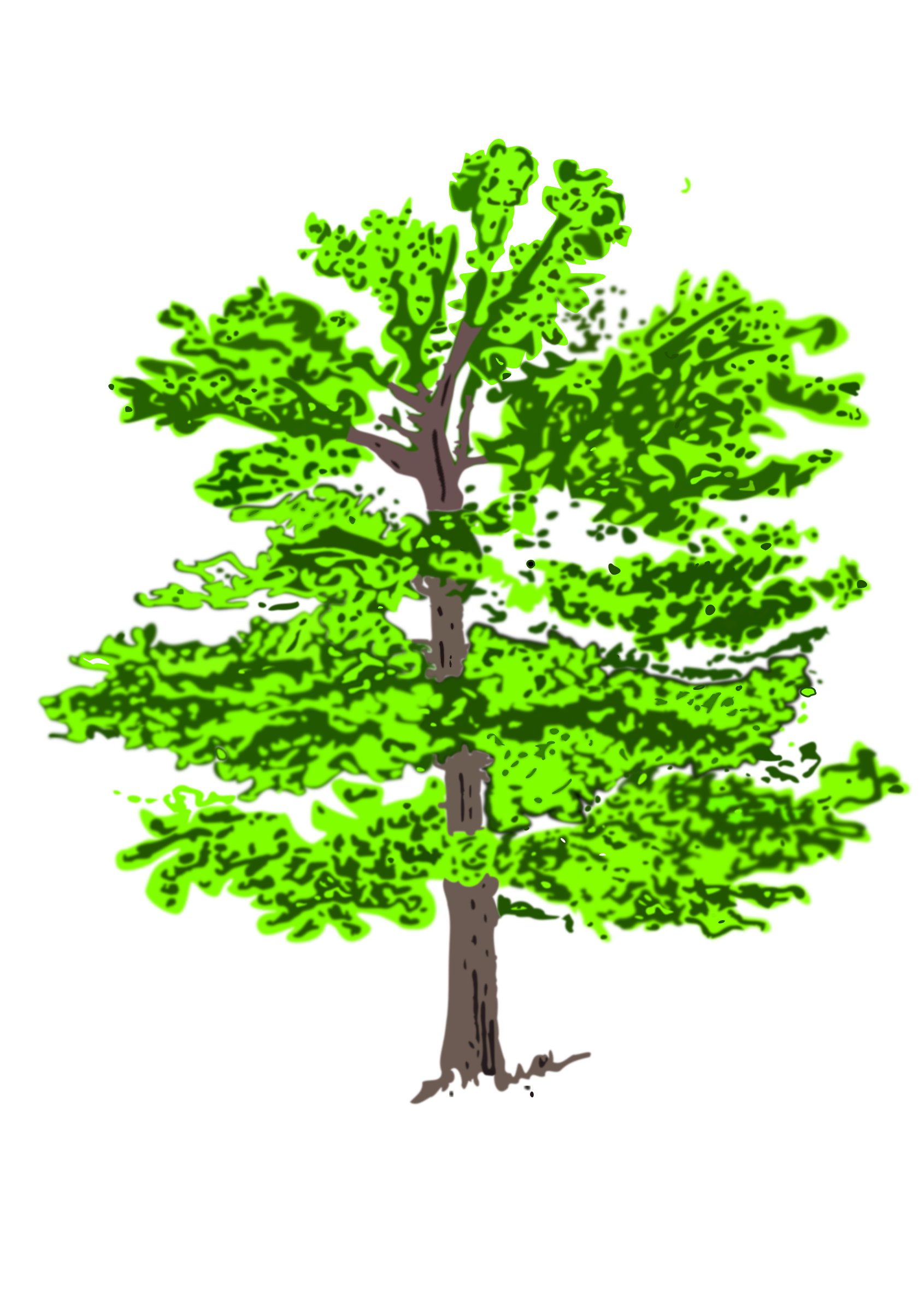 tree 1 coloured by Helm42
