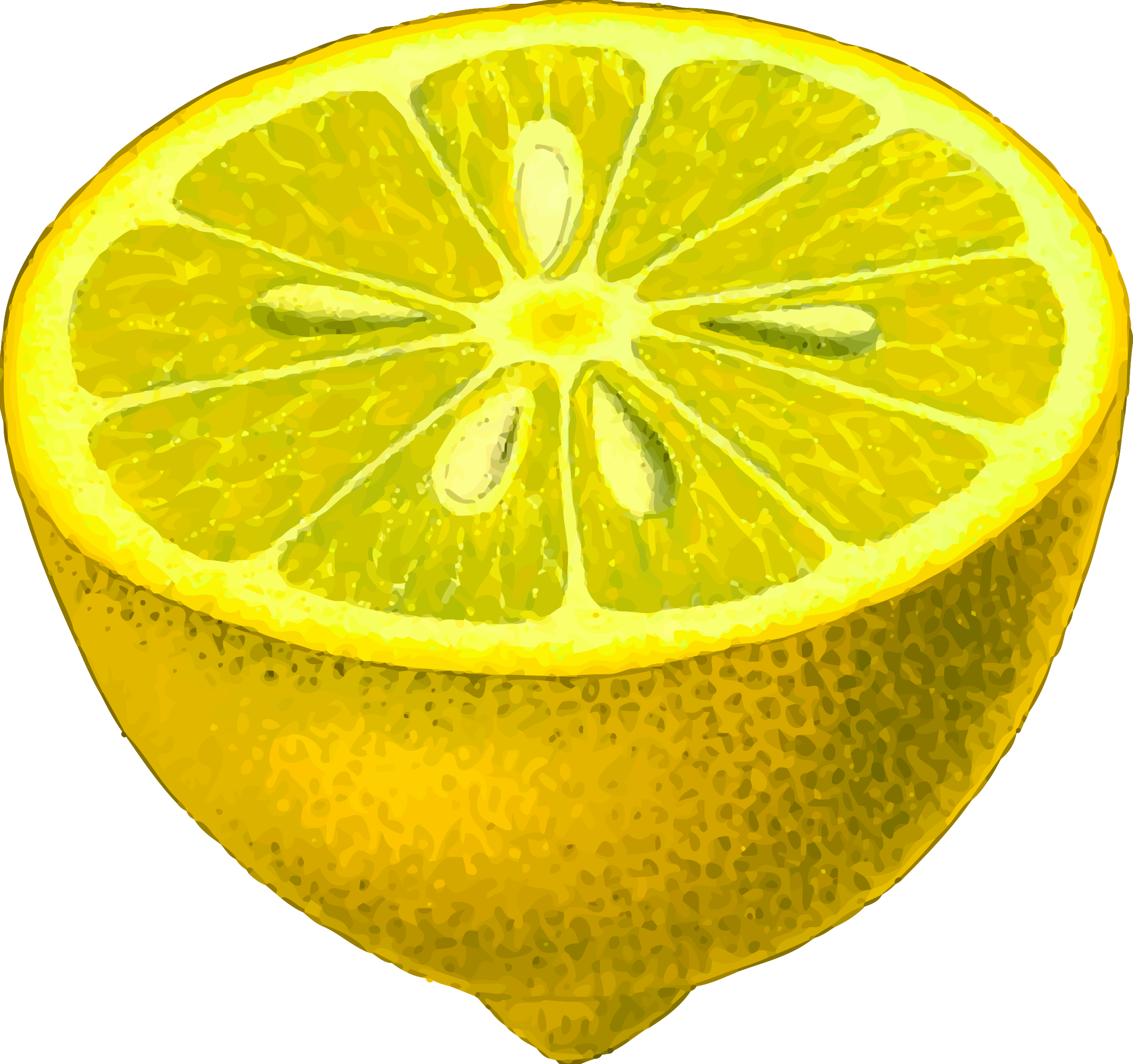 Half-lemon (detailed) by Firkin