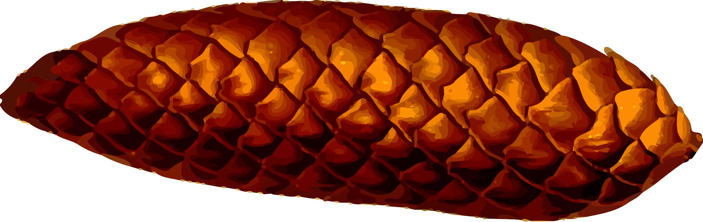 Pine cone (detailed) by Firkin