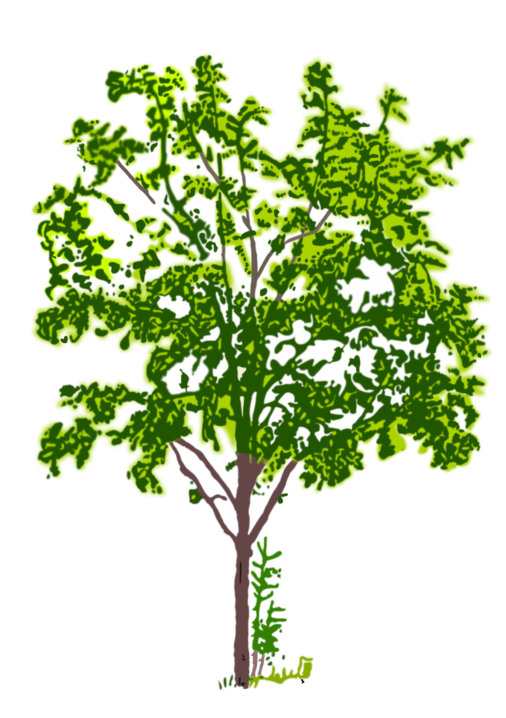 tree2 coloured by Helm42