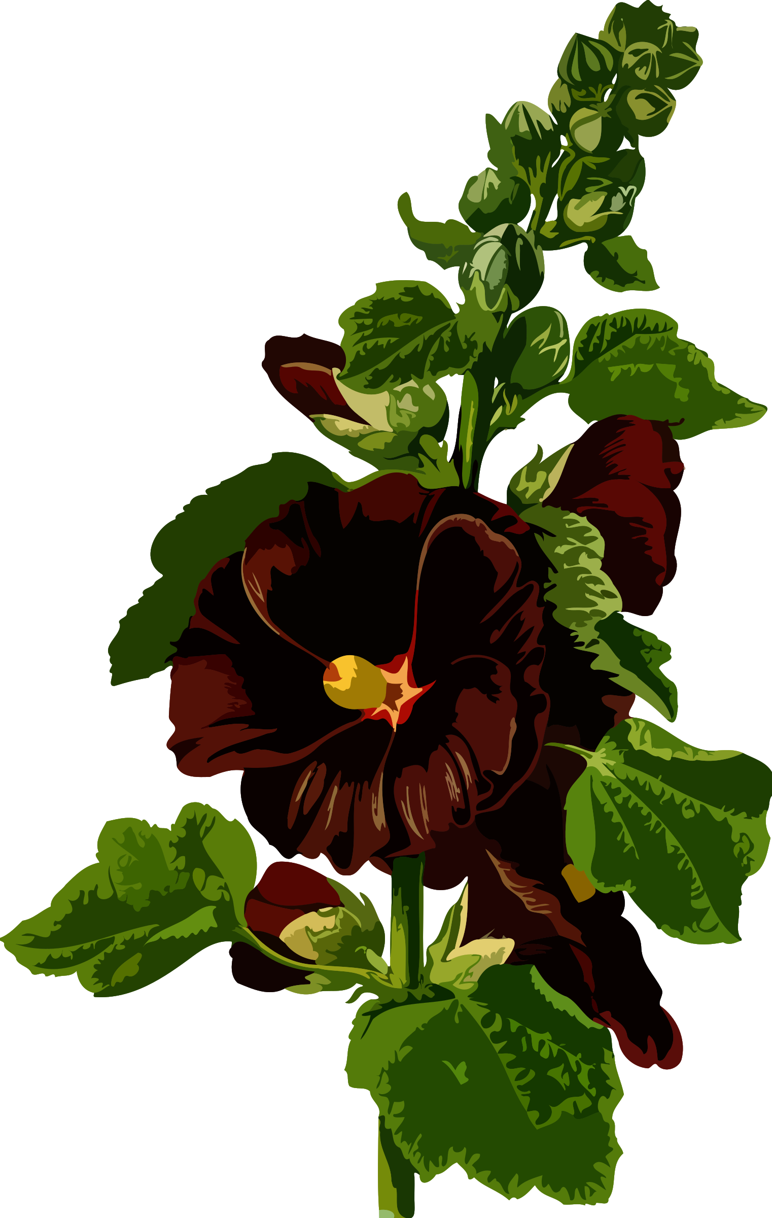 Hollyhock (low resolution) by Firkin