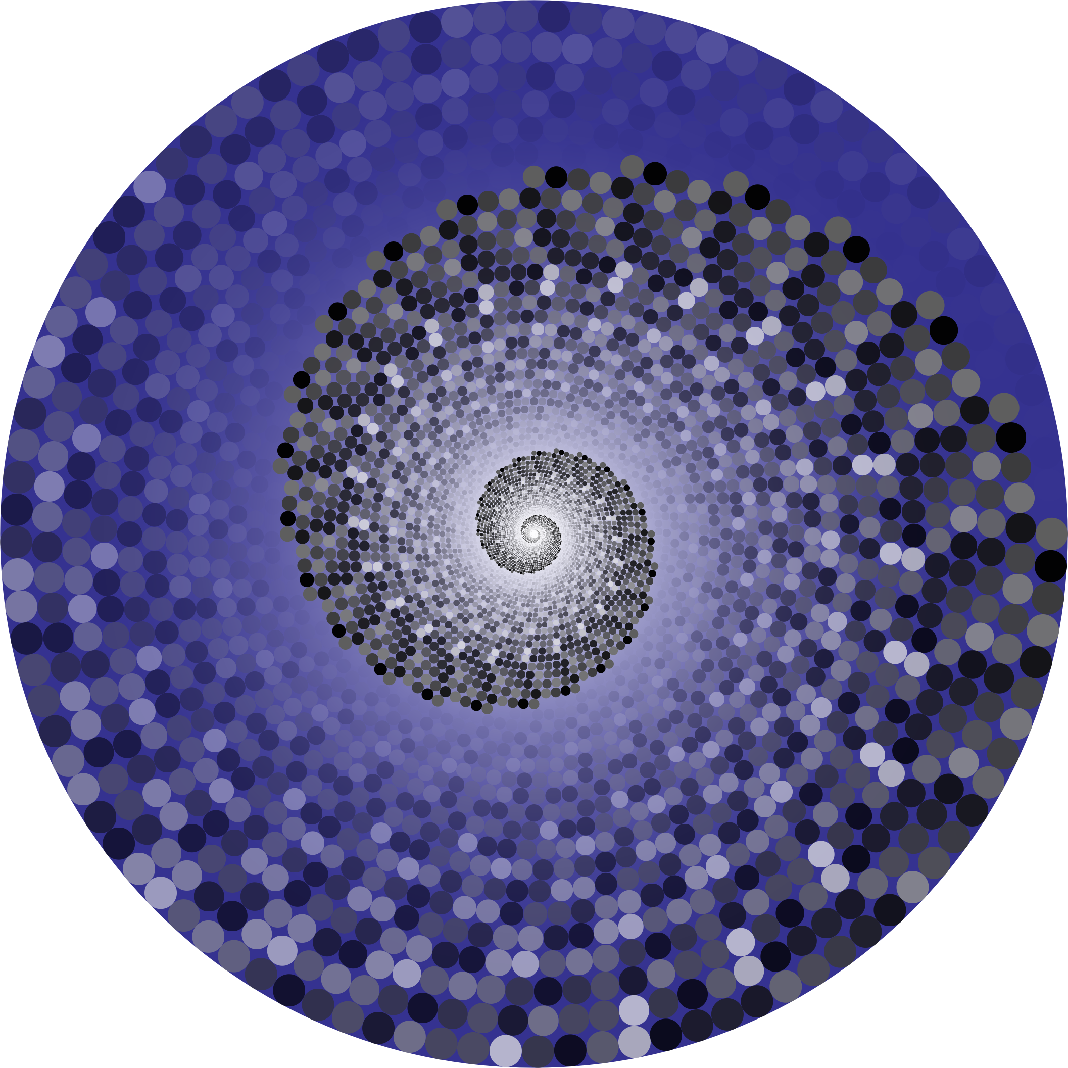 Grayscale Swirling Circles Vortex Variation 6 by GDJ