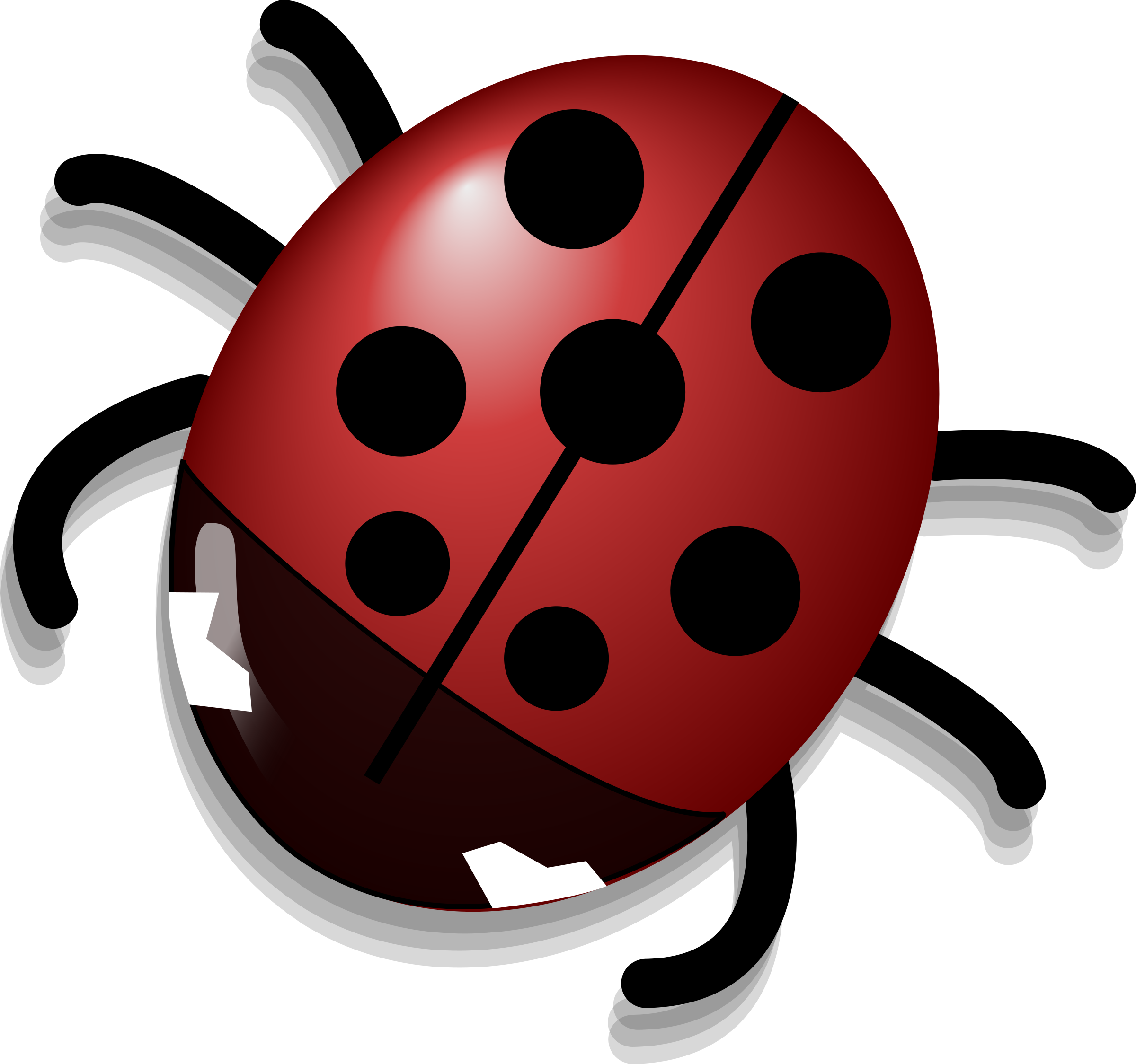 Ladybug by Anonymous
