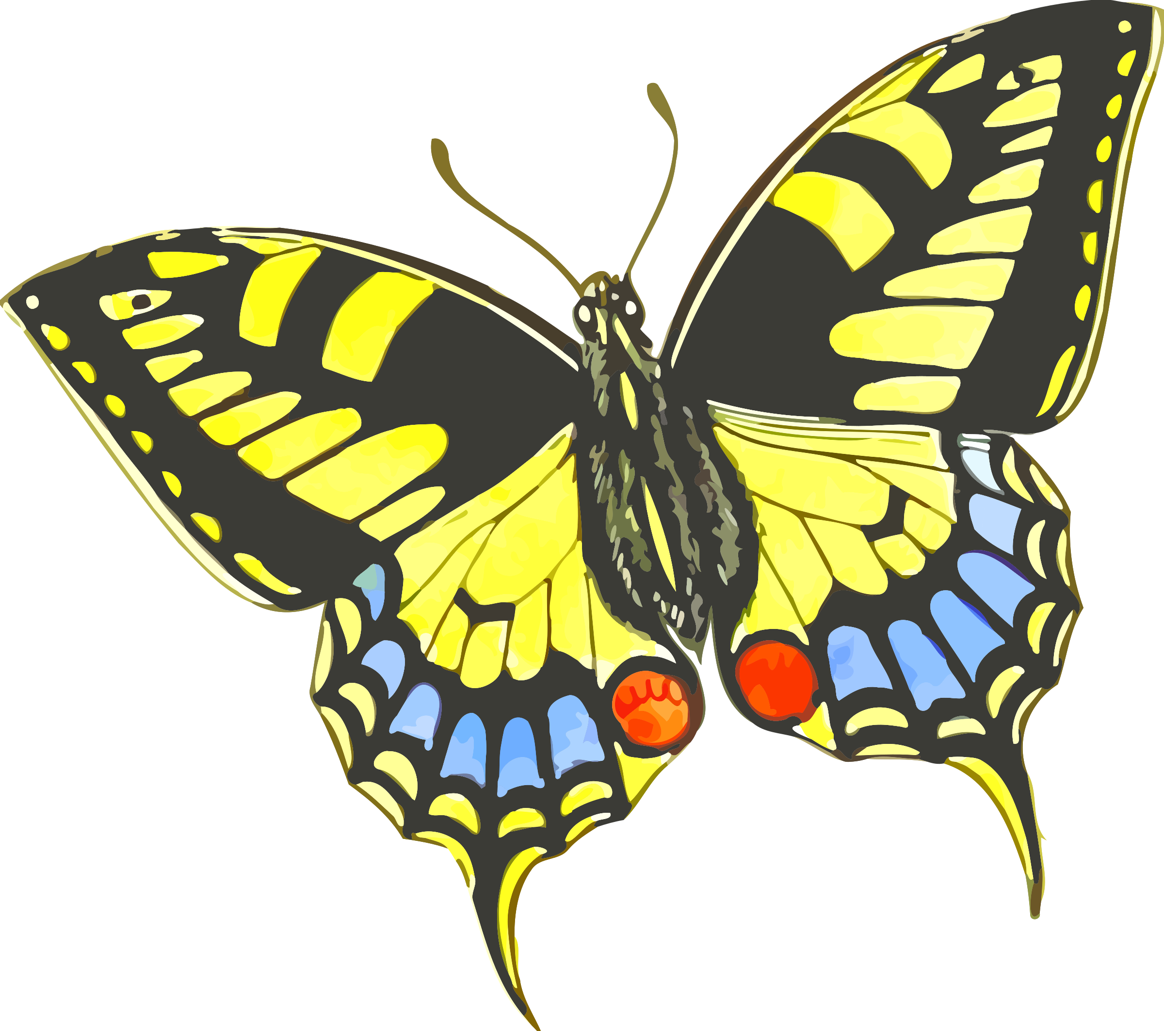 Butterfly 9 by Firkin