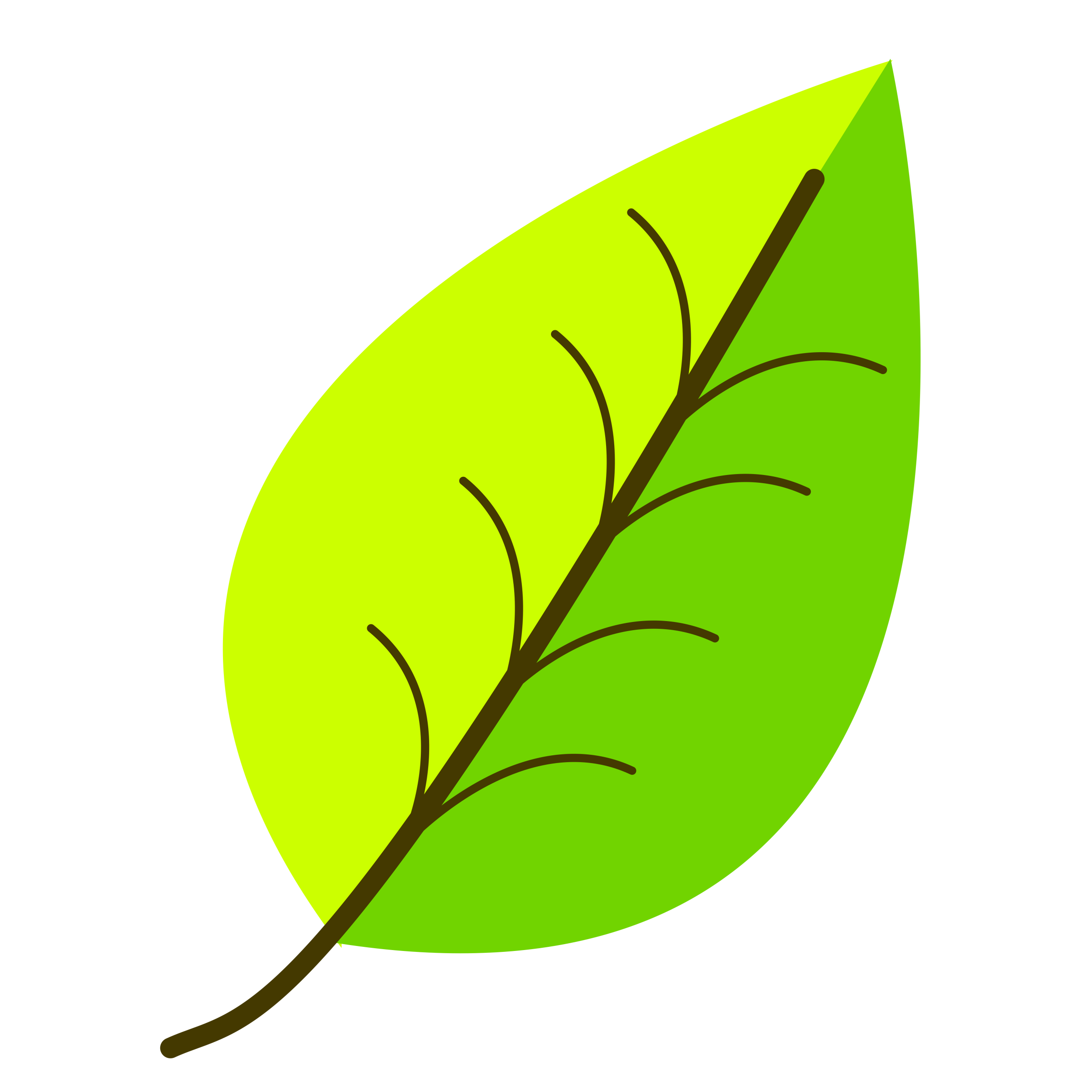 Leaf- with venation, two color. by oldifluff