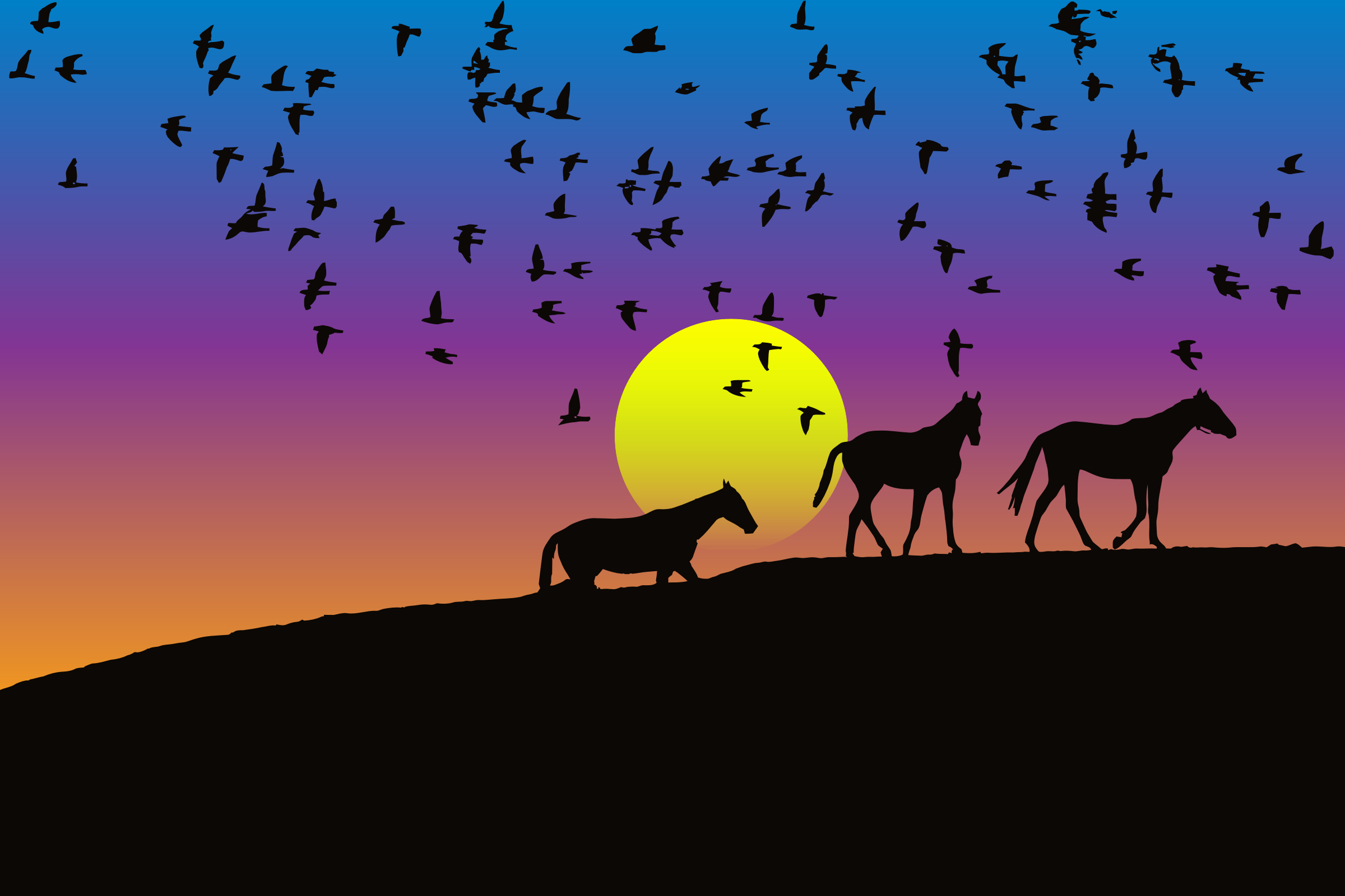 Birds And Horses Silhouette Sunset 2 by GDJ