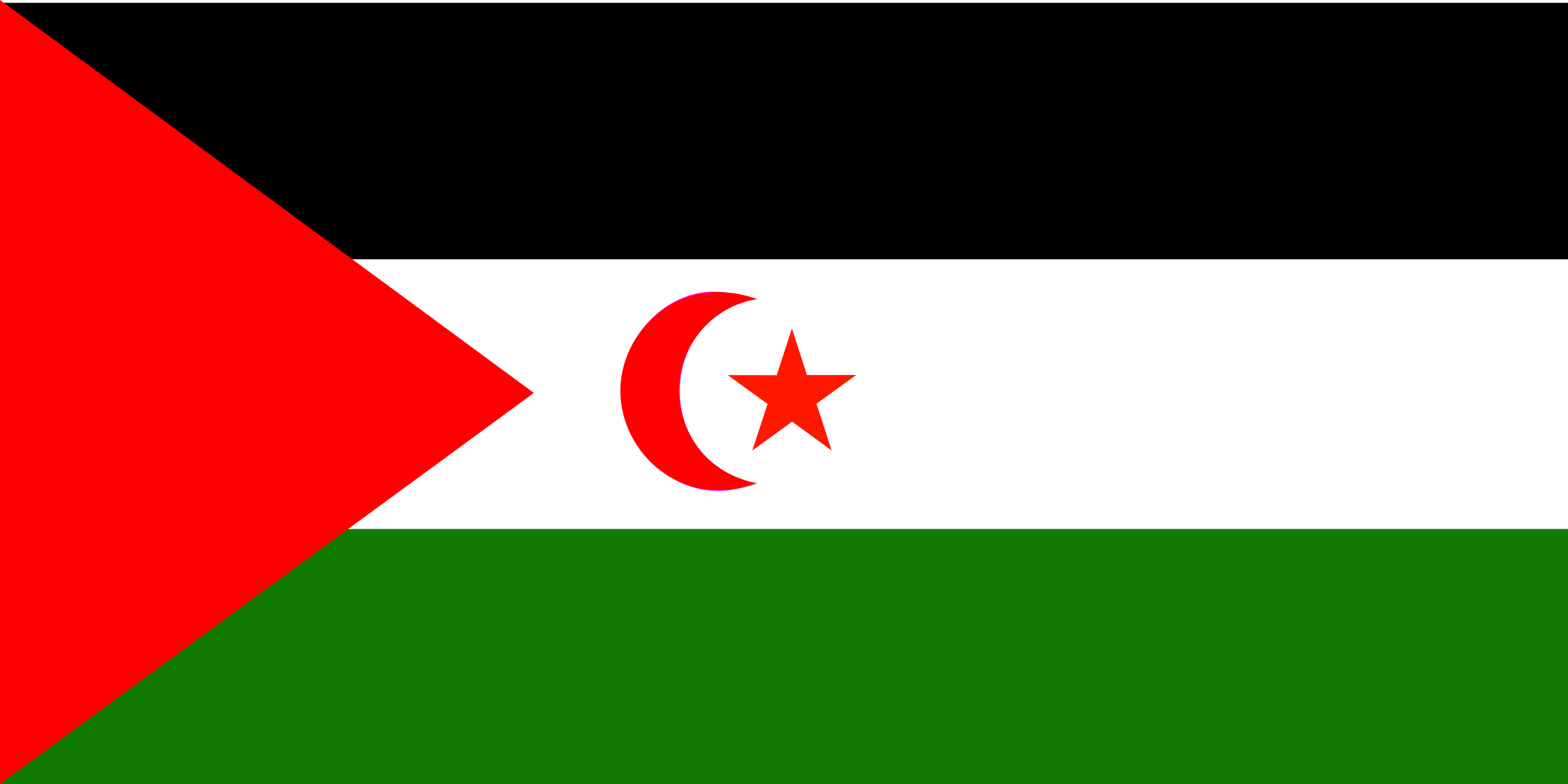 Flag of Western Sahara by Anonymous
