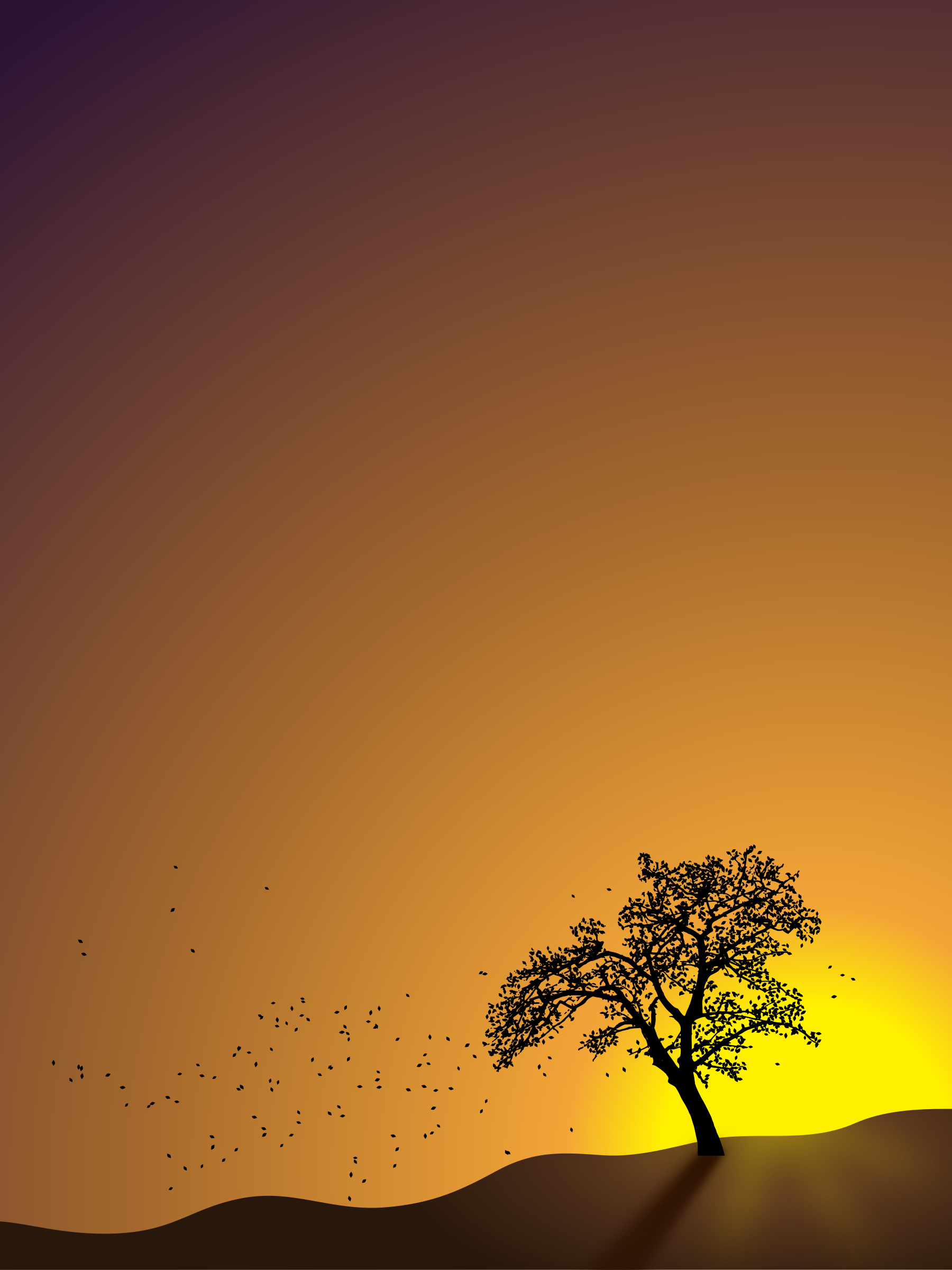 Tree in Sunset by Tomas Sobek