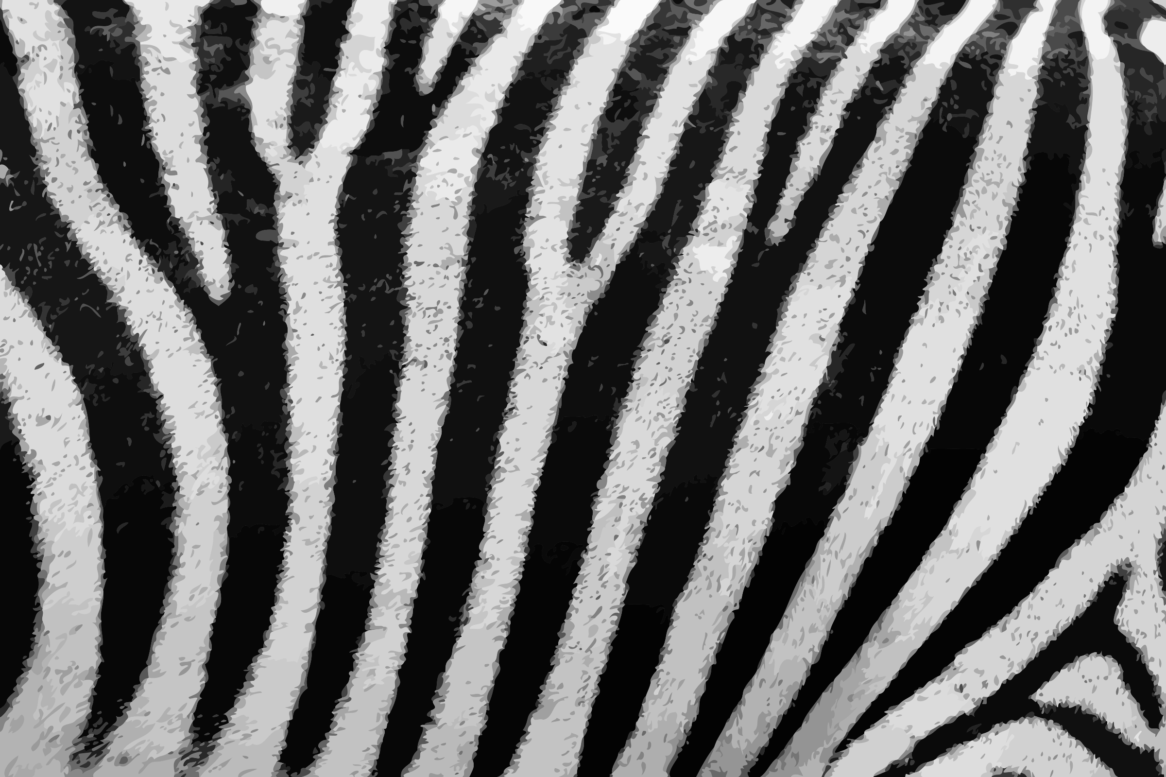 Zebra fur by Firkin