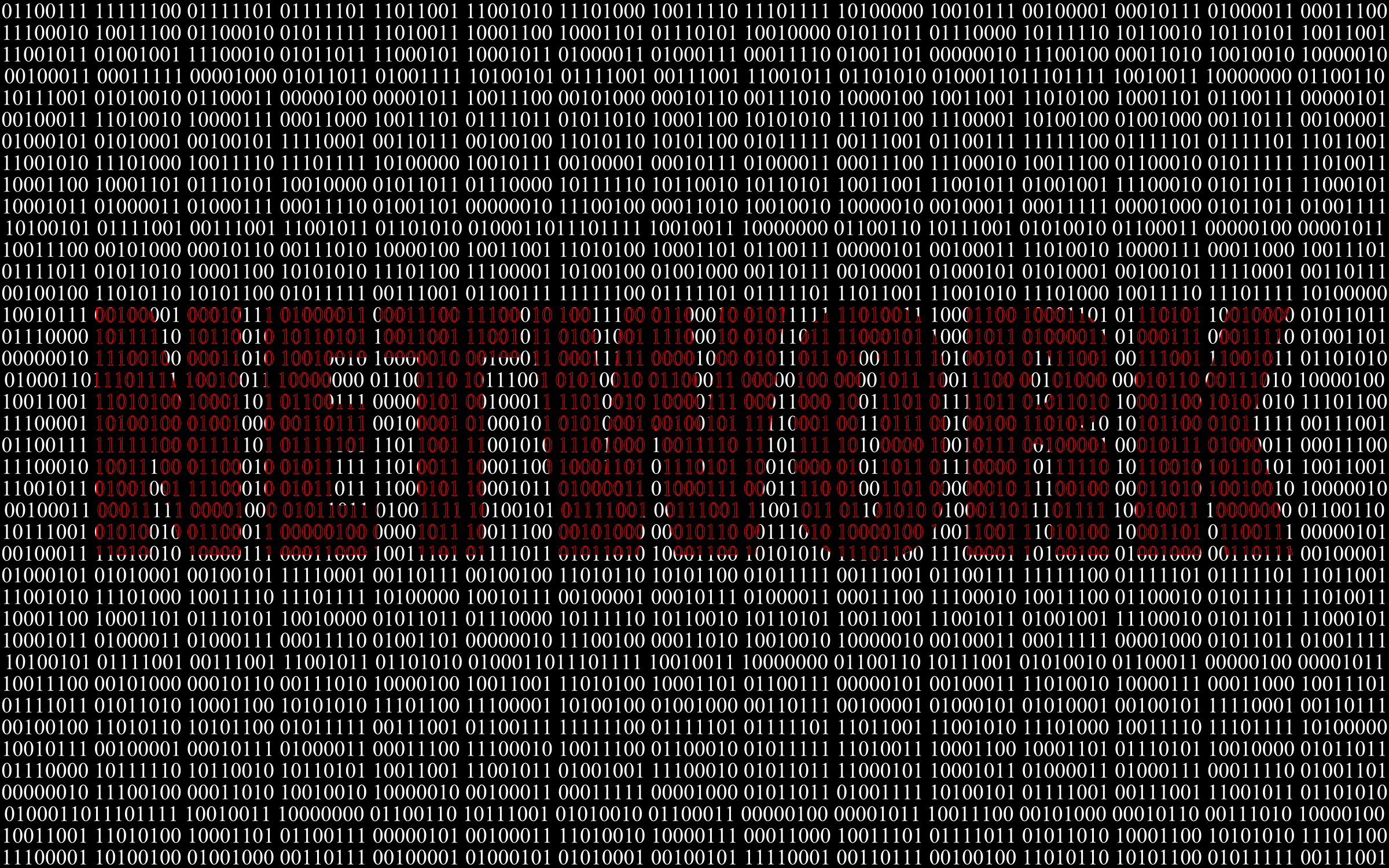 Binary Network by GDJ