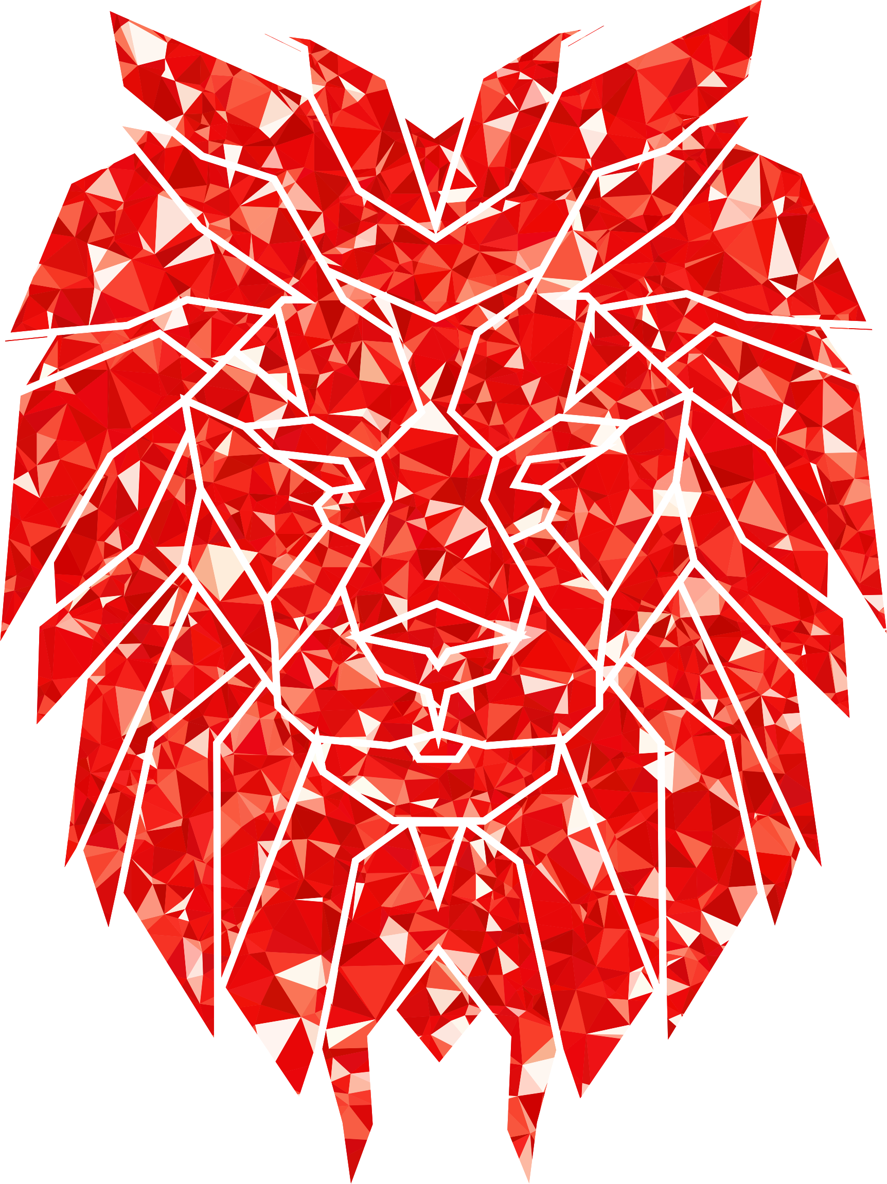 Ruby Polygonal Lion Face by GDJ