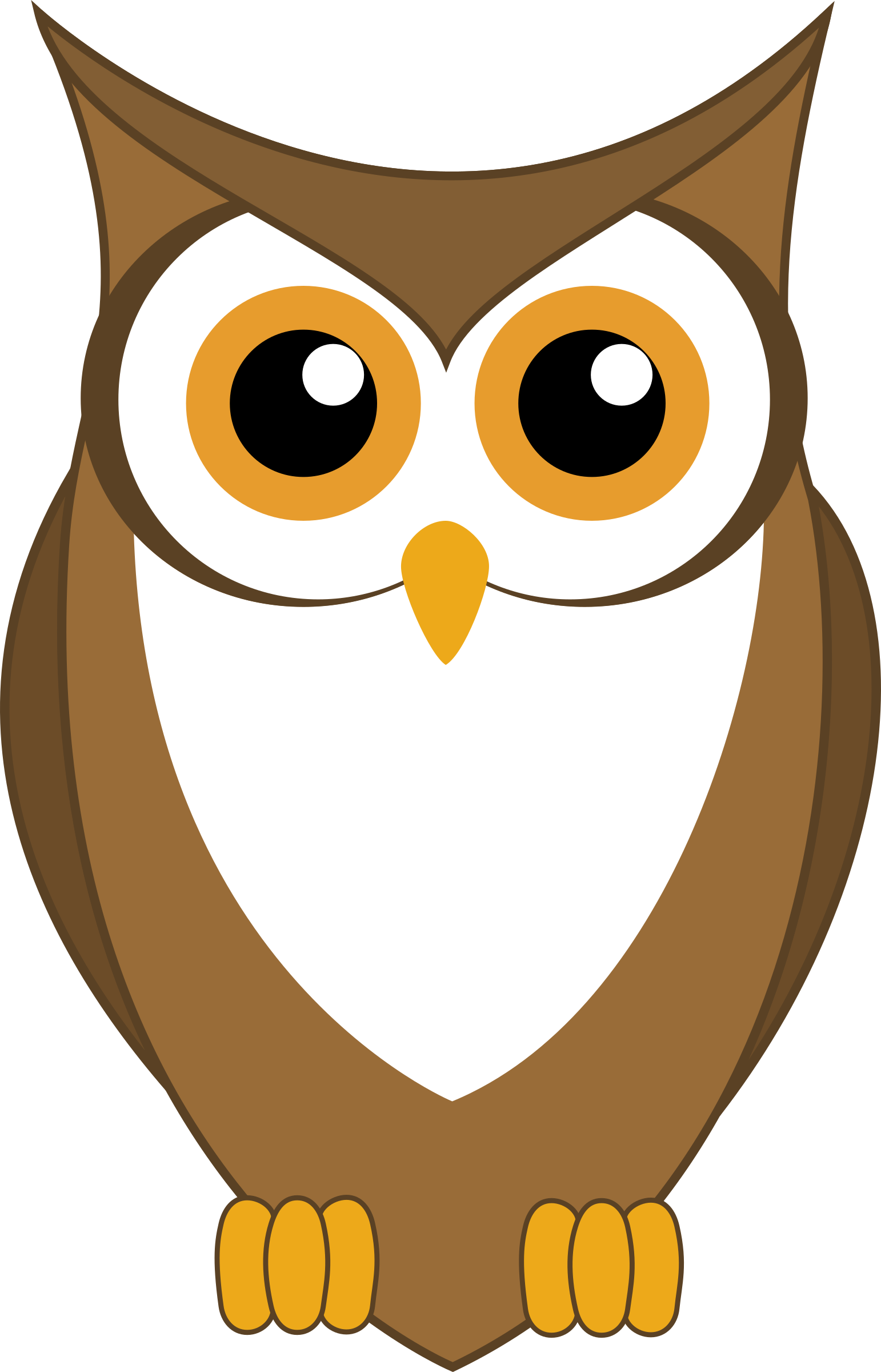 Owl Vector by Maiconfz
