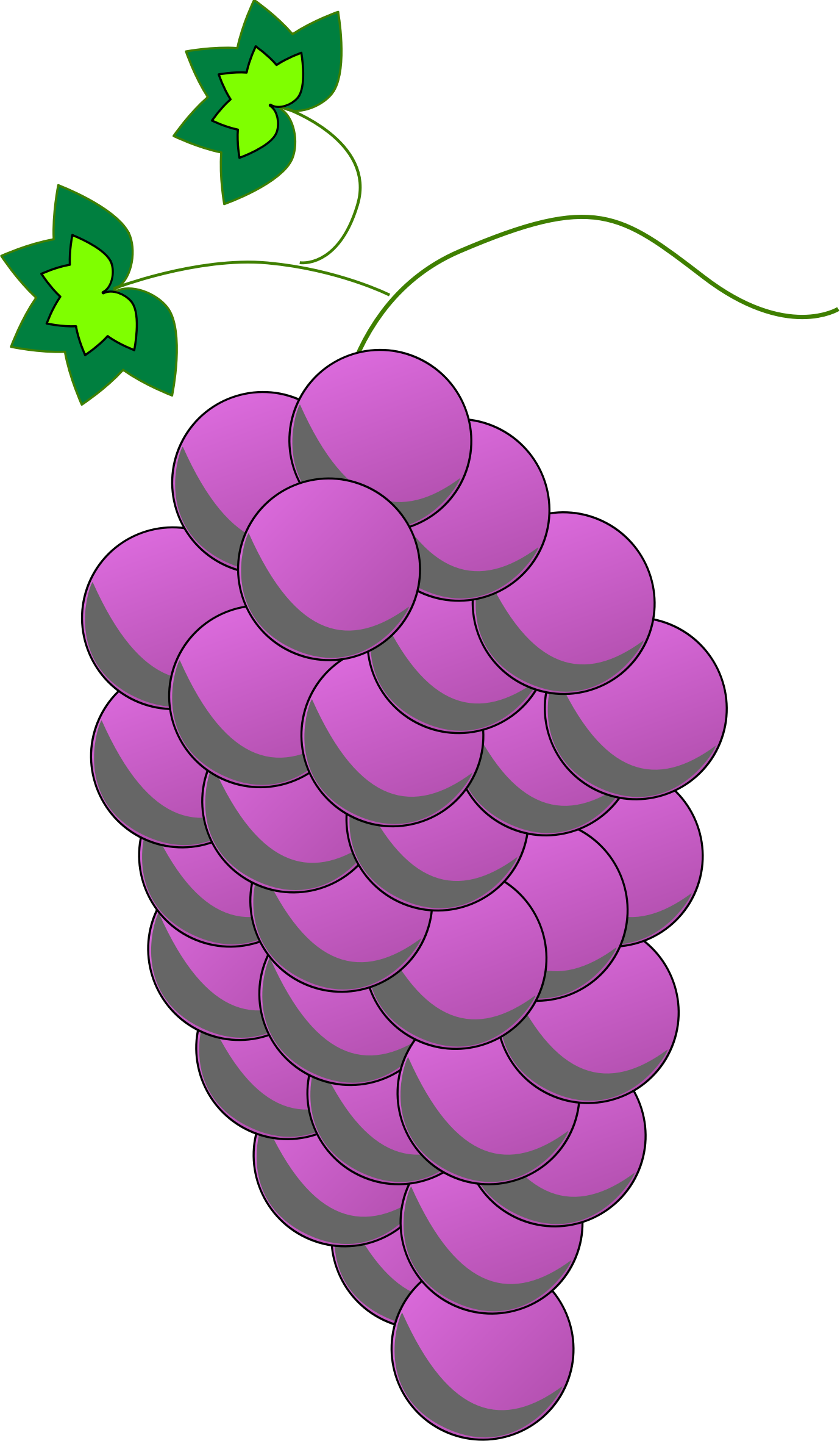 Colored Grapes line art - Purple by Astro
