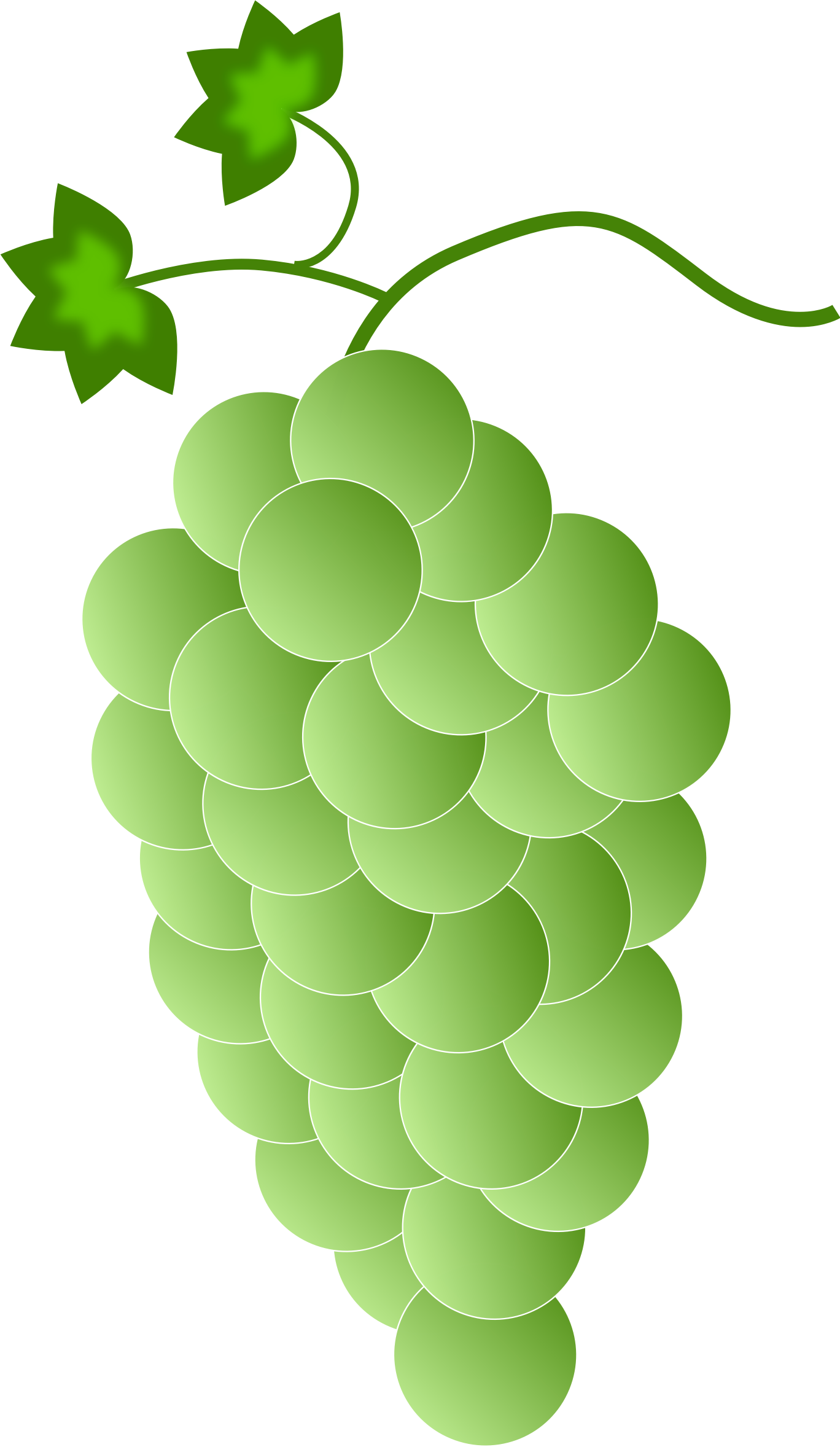 Green\white Grapes by Astro