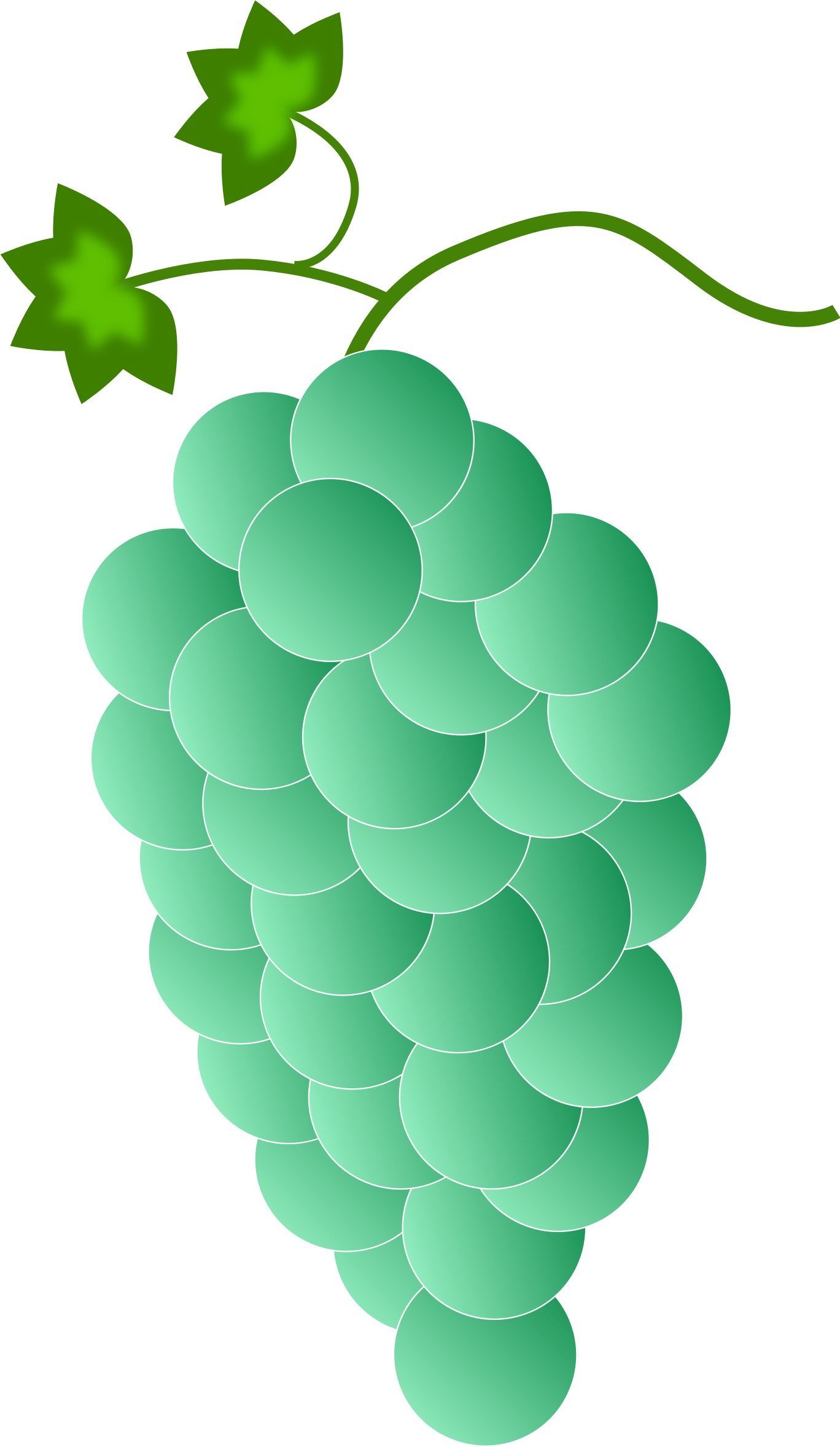 Colored Grapes - Green by Astro