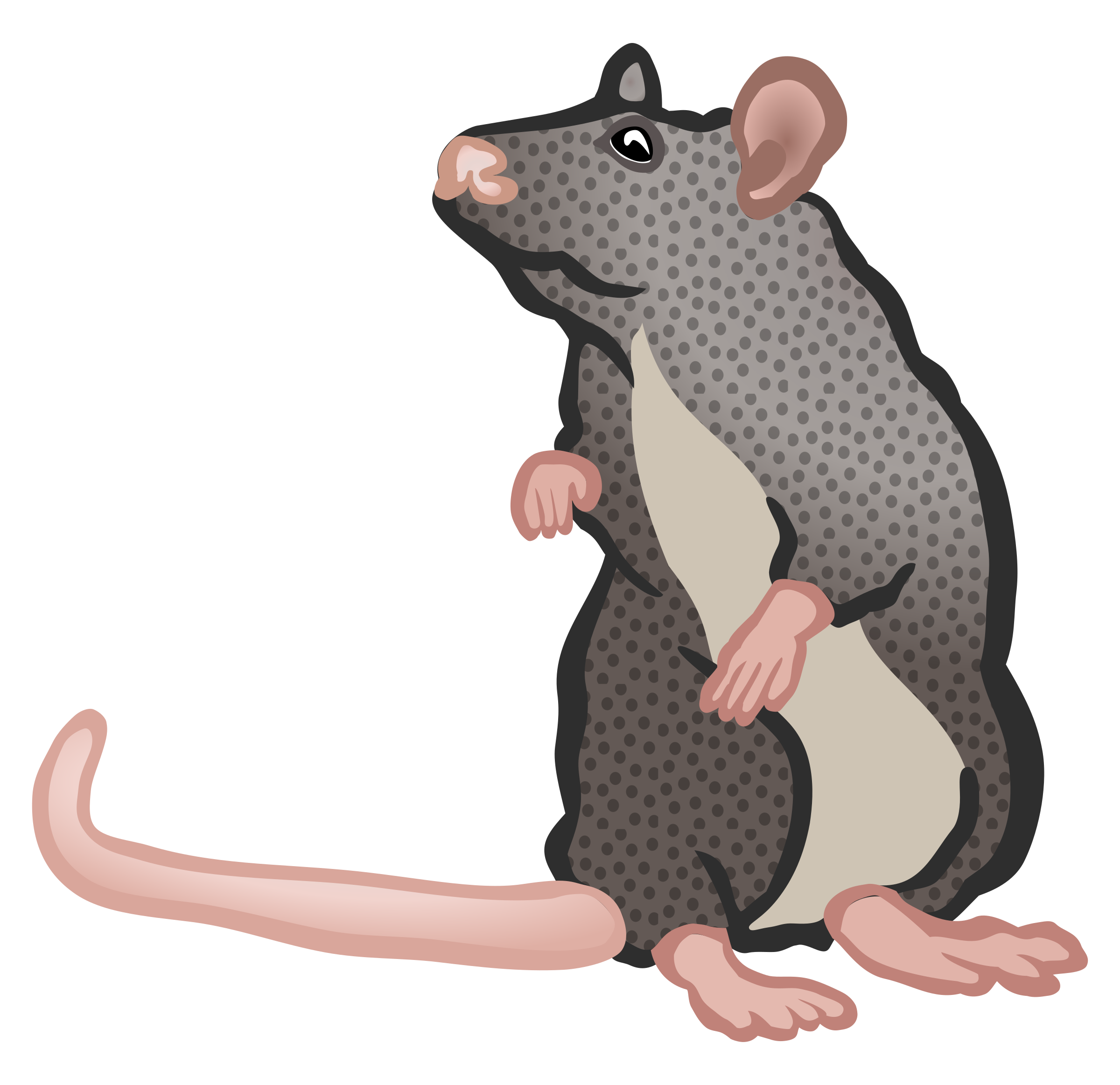 mouse two - coloured by frankes