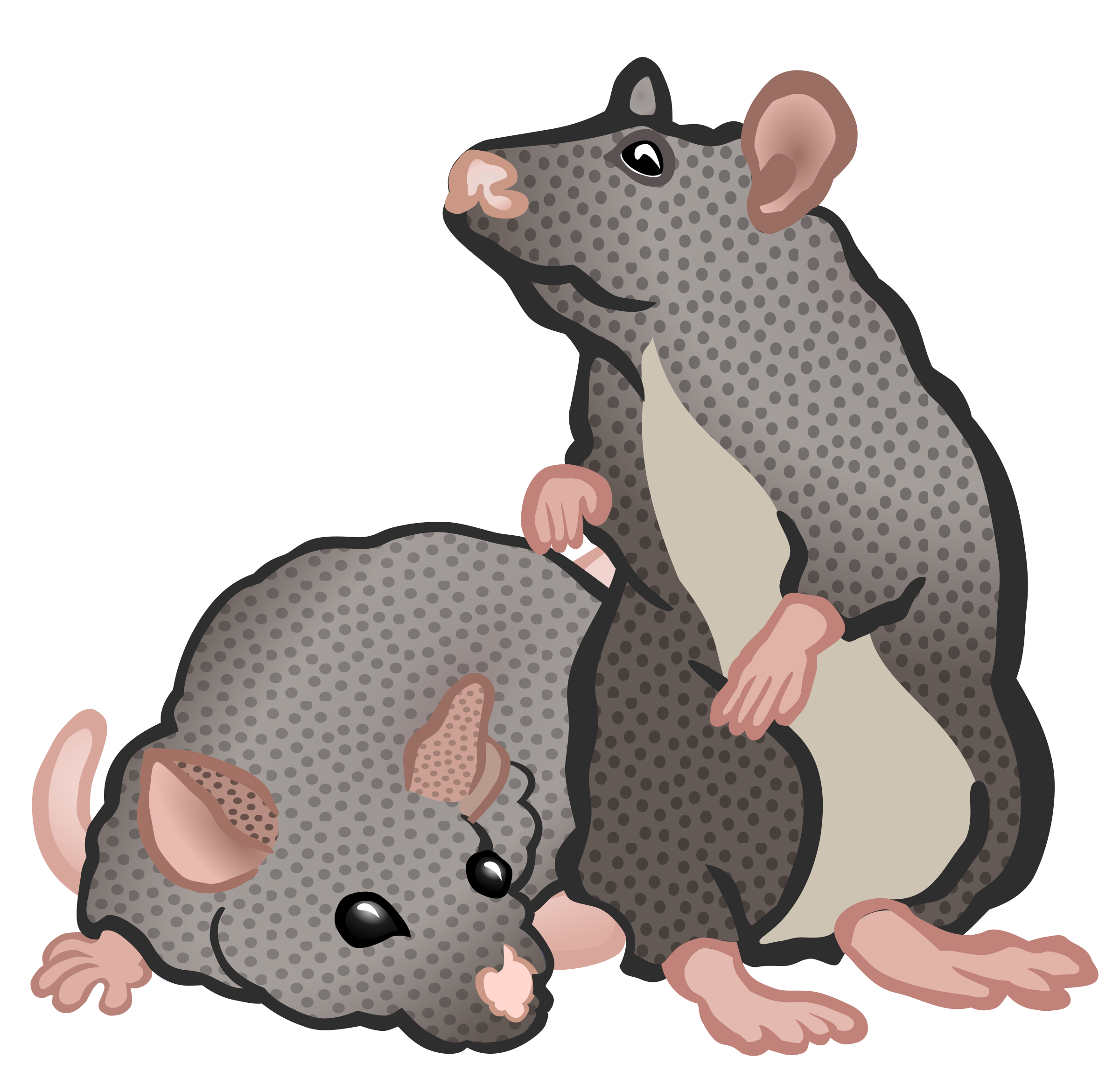 mice - coloured by frankes
