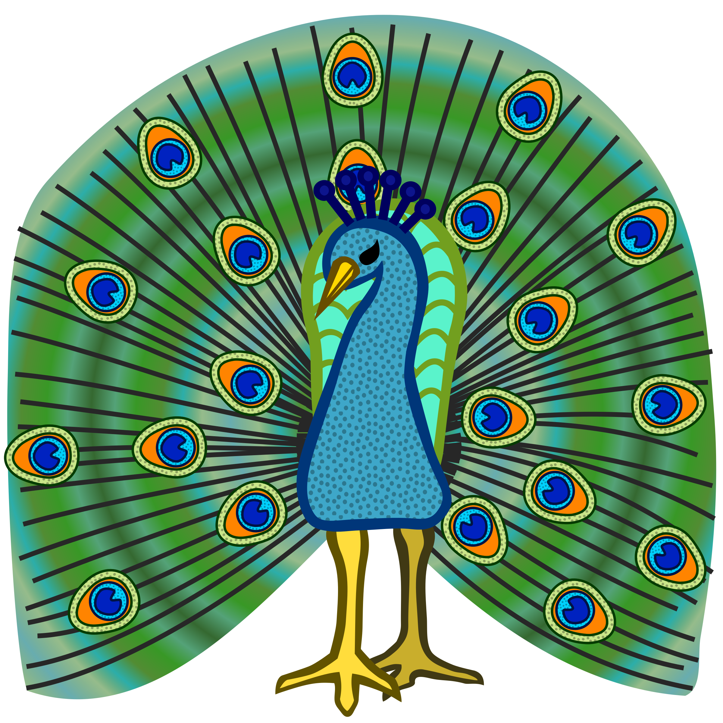clipart peacock coloured