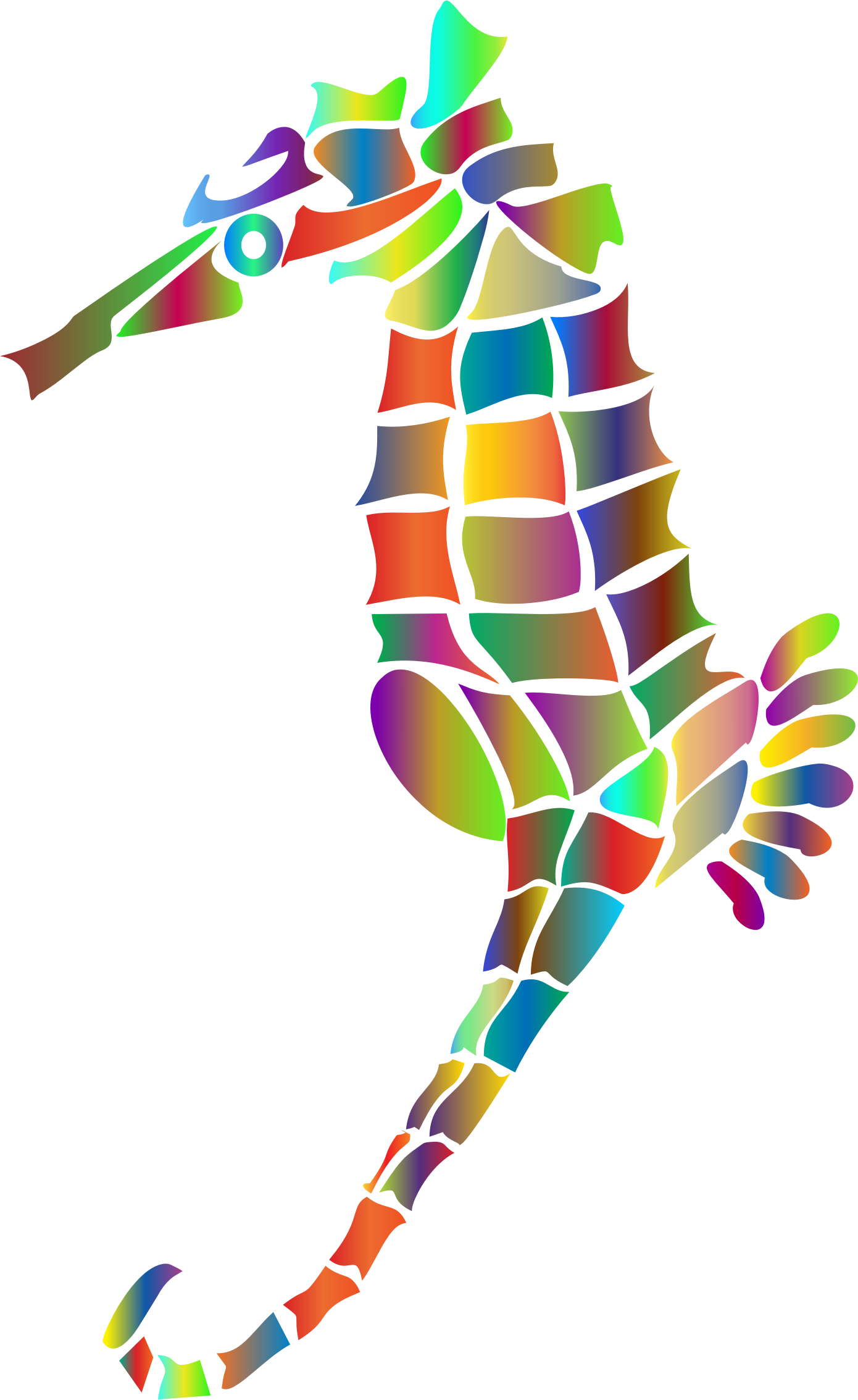 Prismatic Stylized Seahorse Silhouette 4 by GDJ