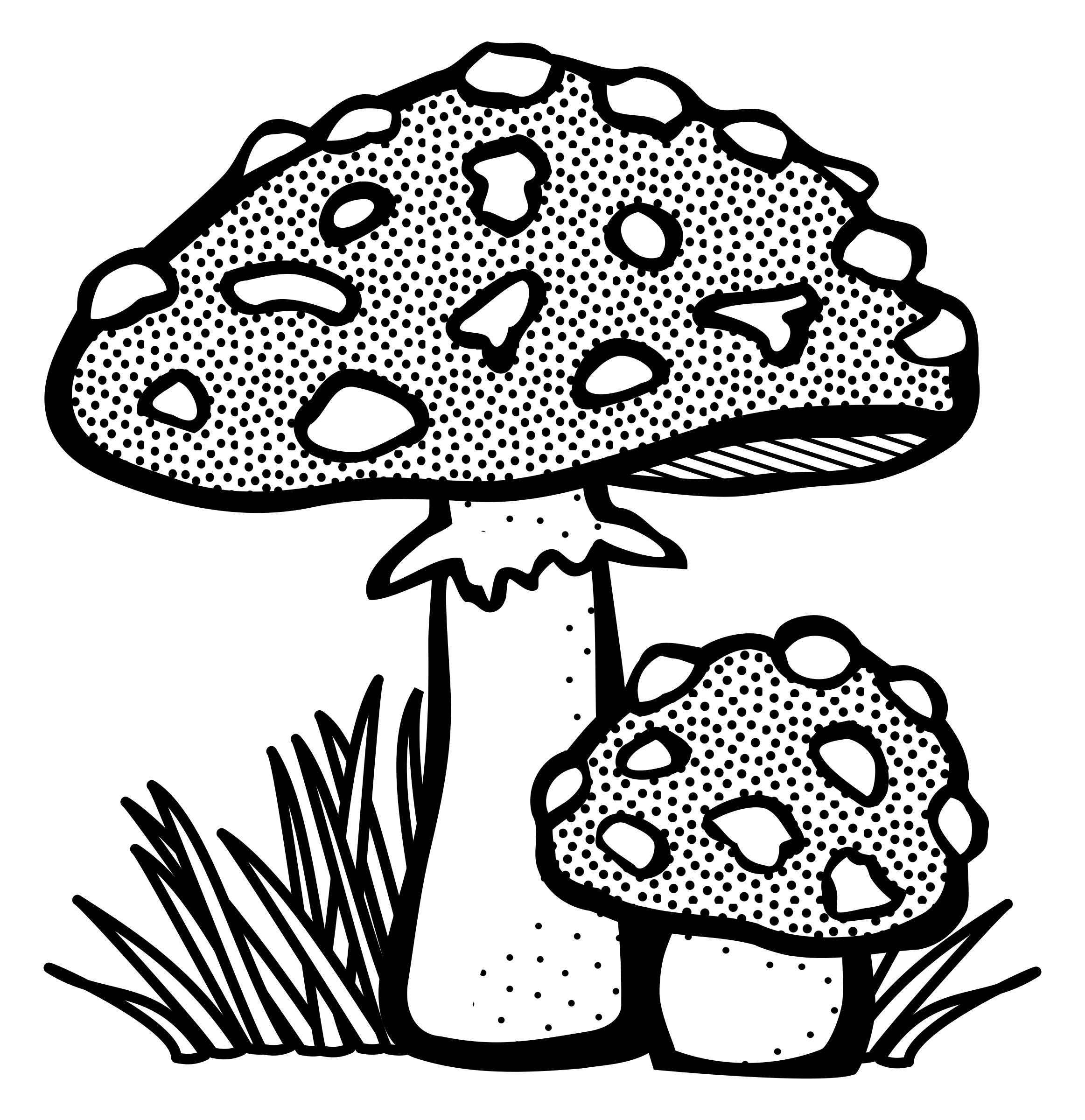 toadstool - lineart by frankes