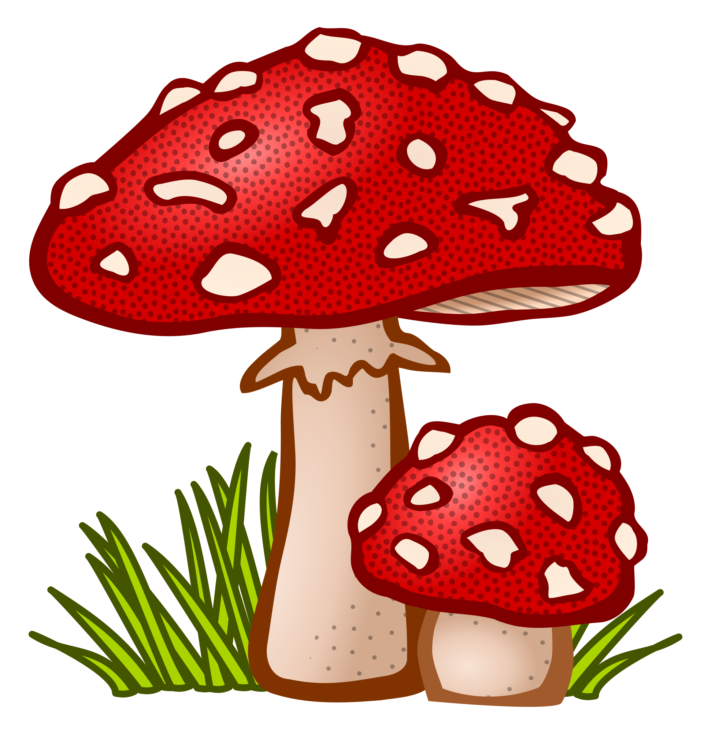 toadstool - coloured by frankes