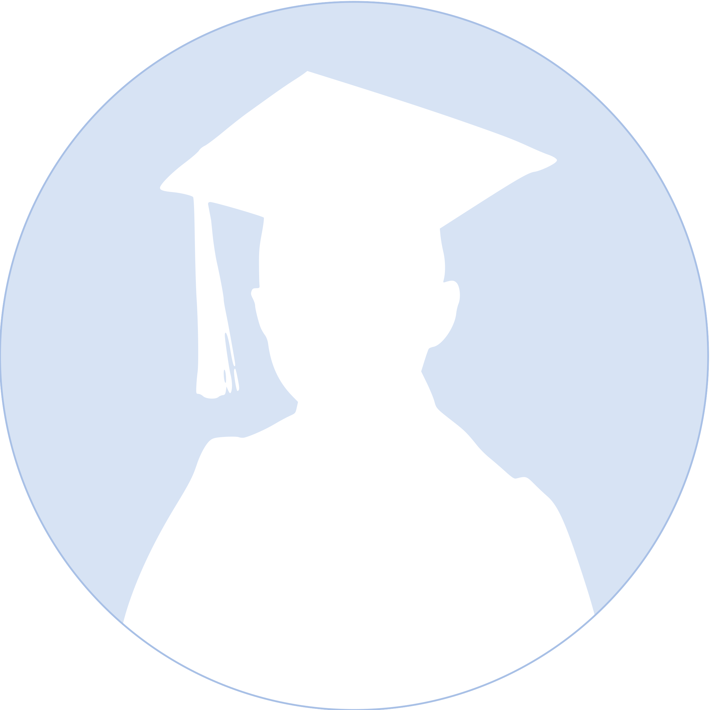 Graduation Boy Profile Circle Silhouette by Maiconfz