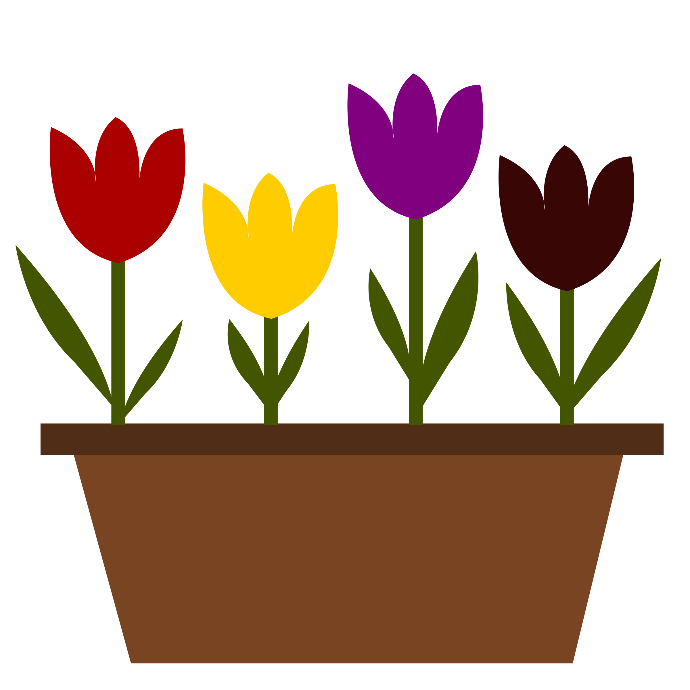 Tulips in a pot, just random! by oldifluff