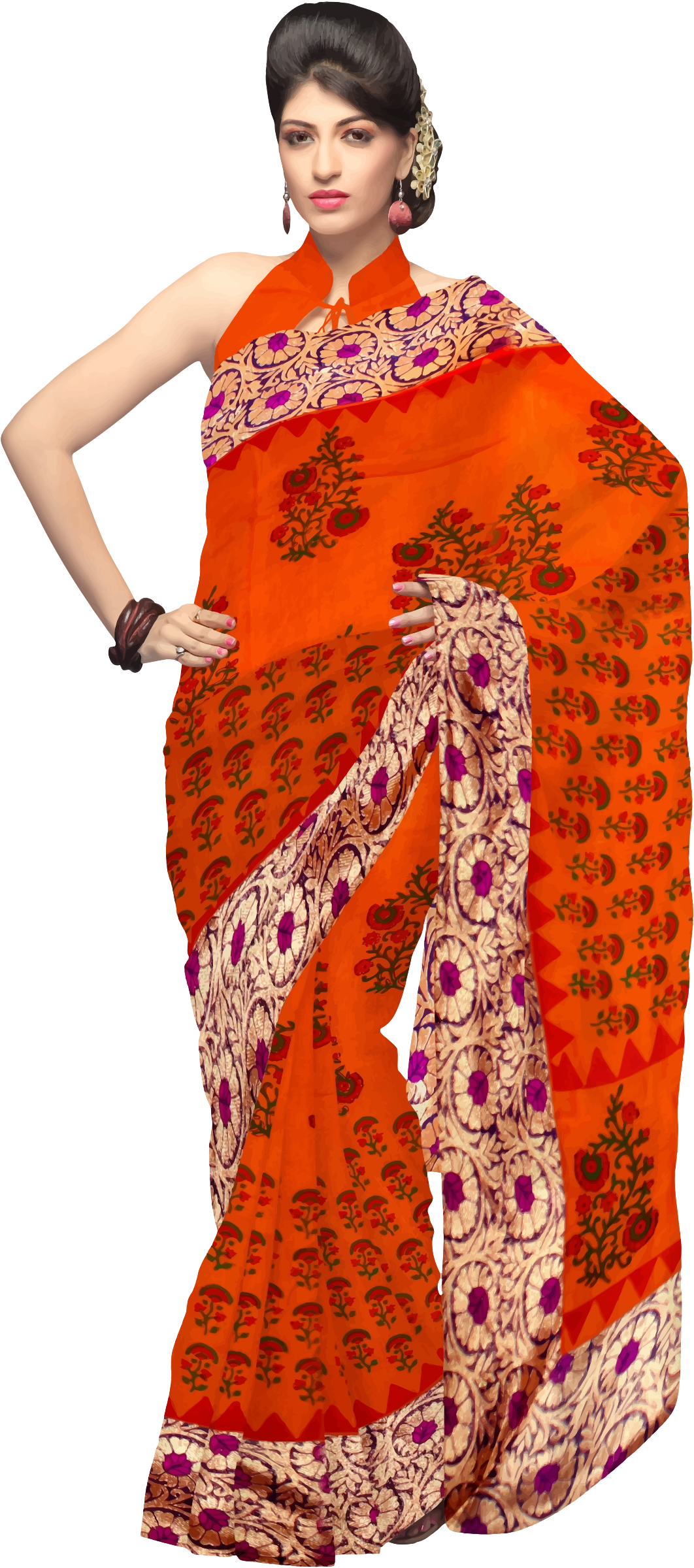 Woman in saree 2 by Firkin