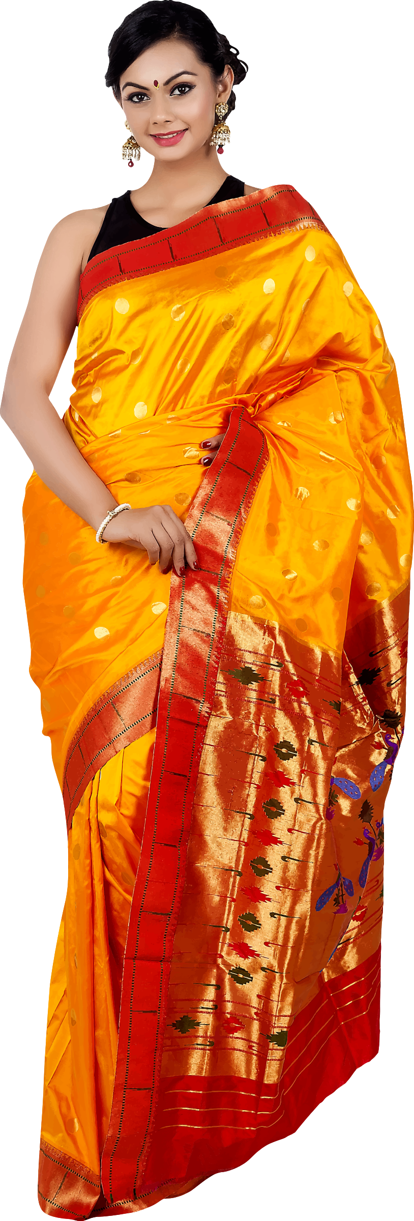 Woman in saree 5 by Firkin