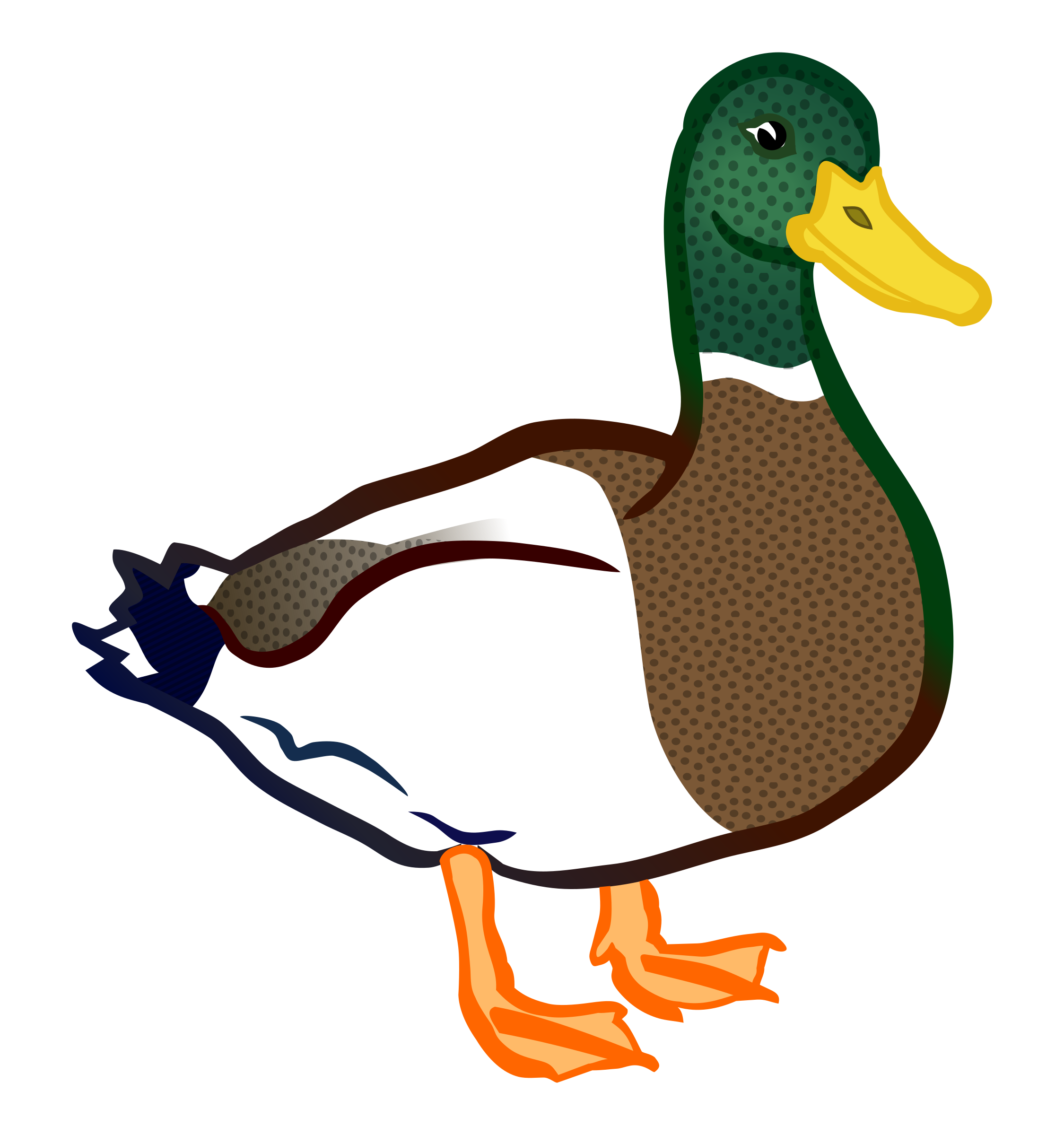 duck - coloured by frankes