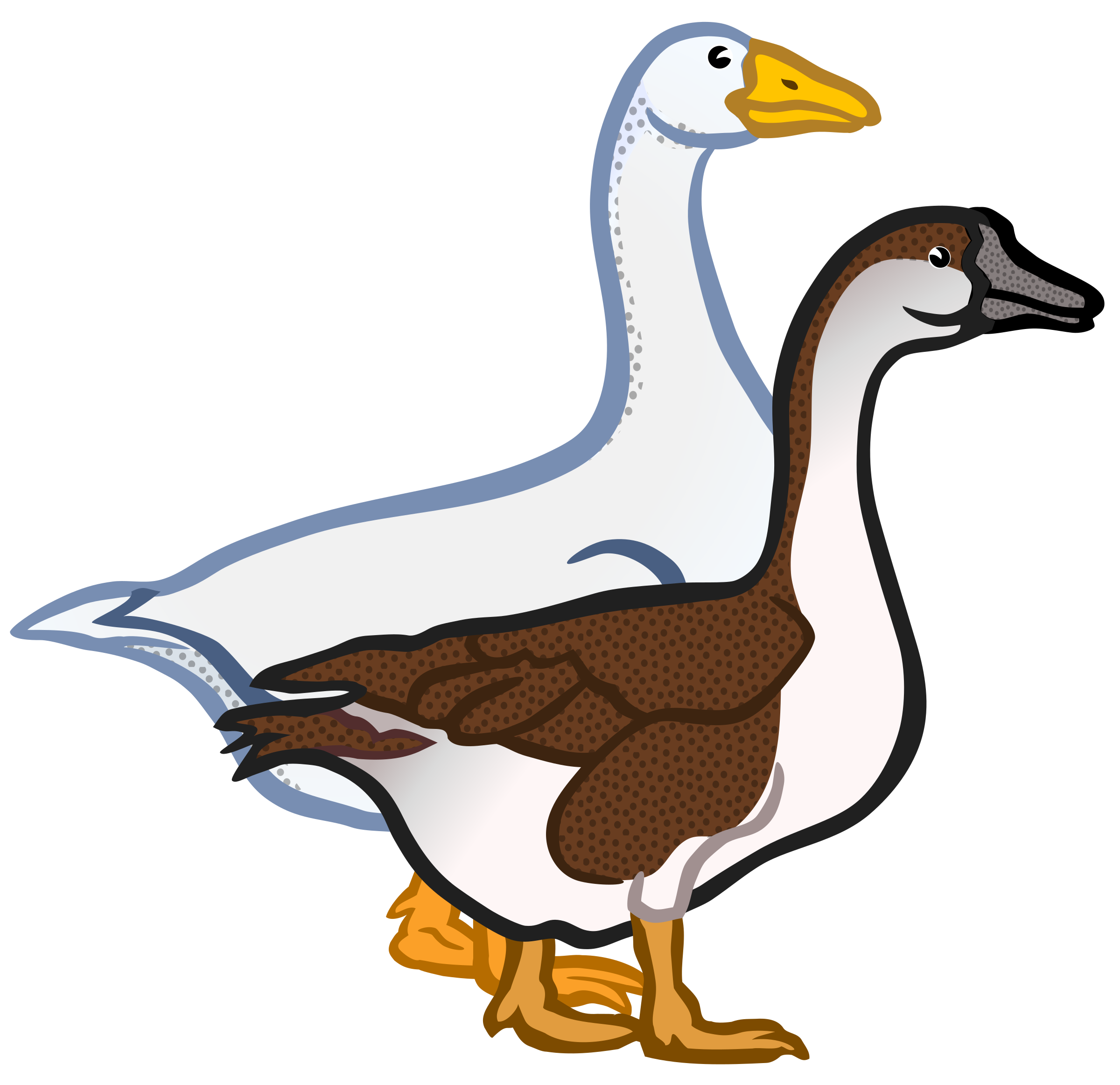 geese - coloured by frankes