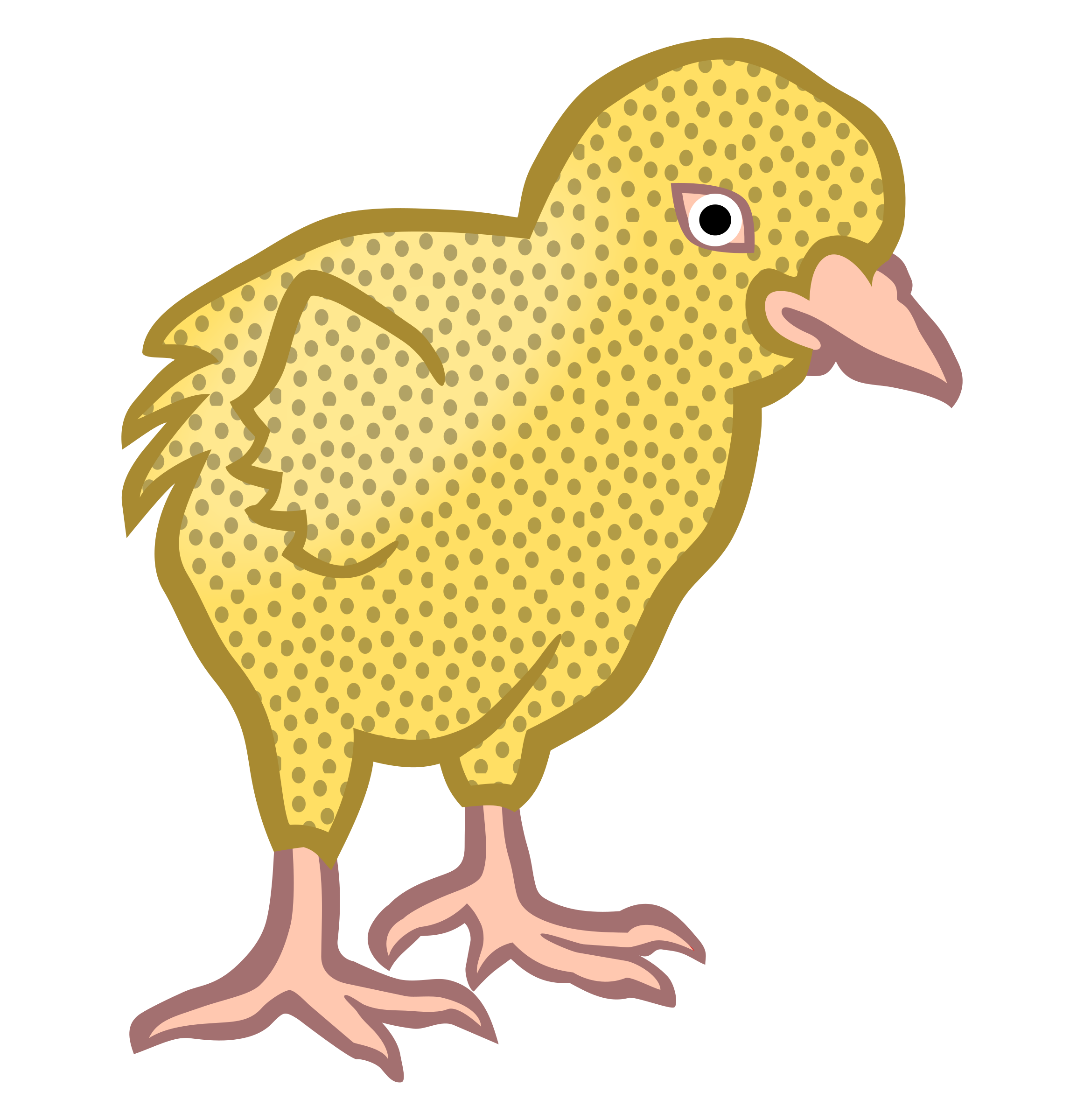 chick1 - coloured by frankes