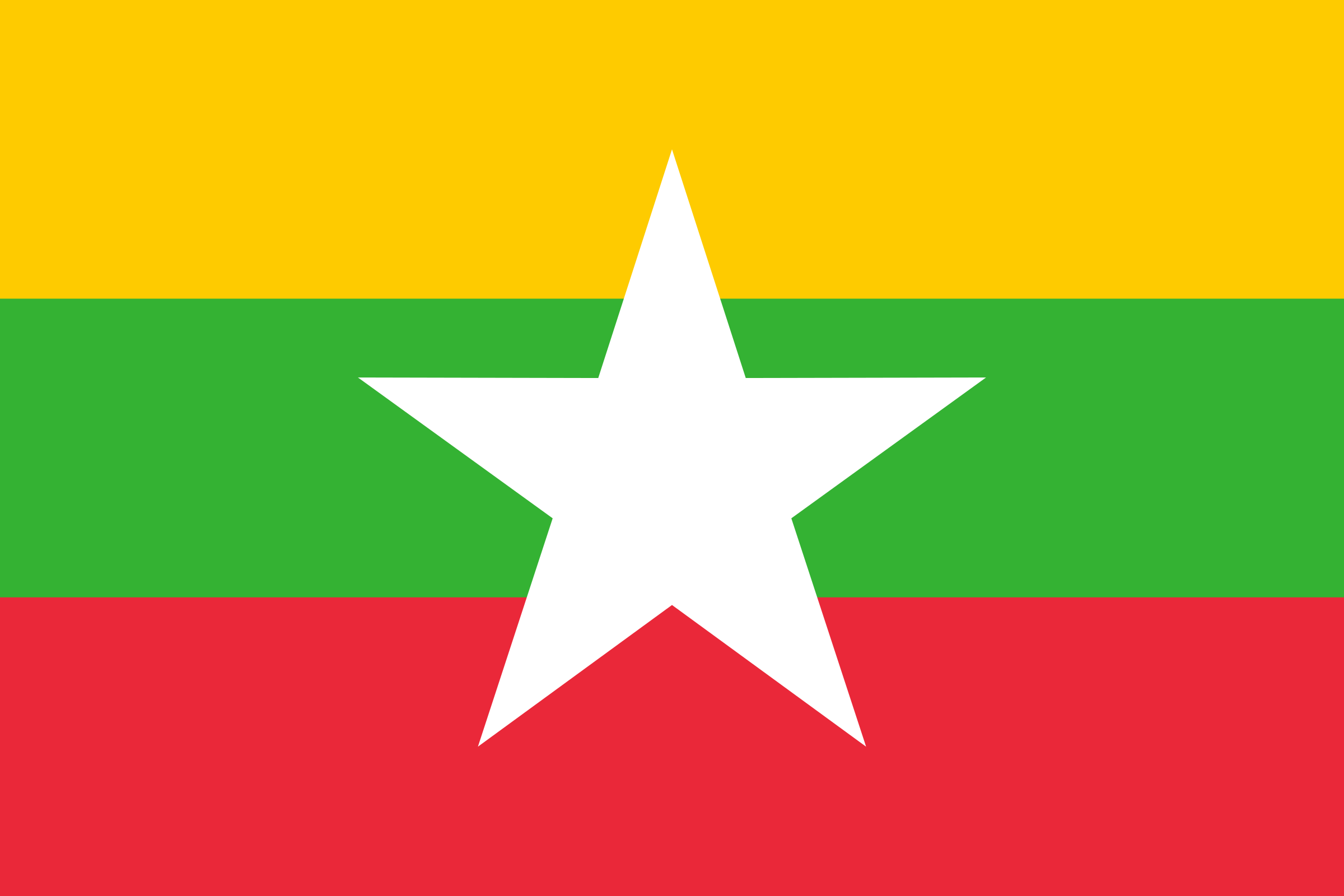 Flag of Myanmar by Firkin