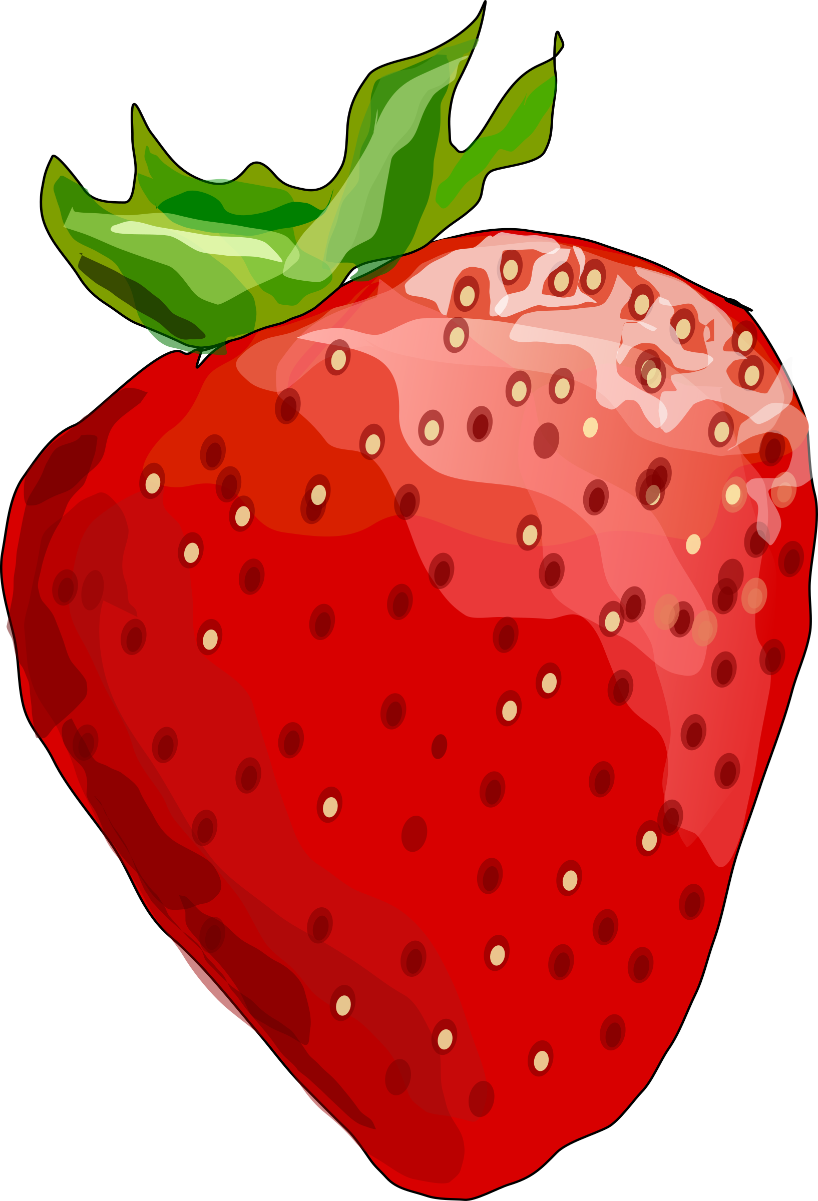 Strawberry by Degri