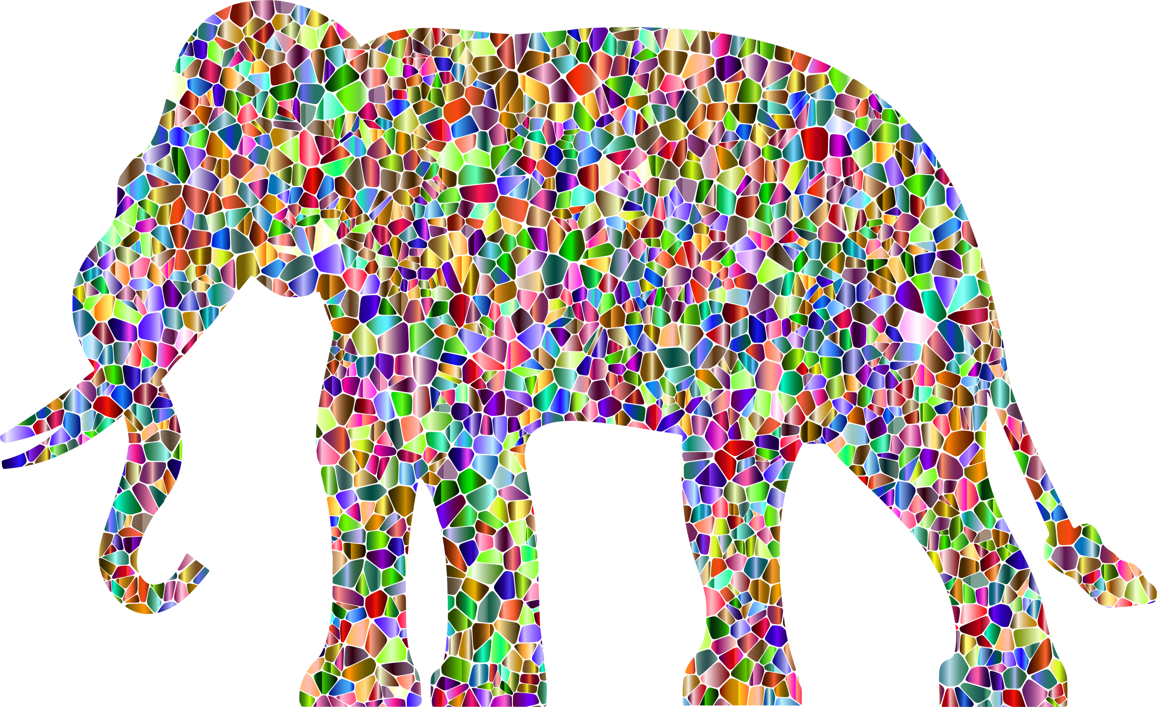 Vivid Chromatic Elephant Silhouette No Background by GDJ