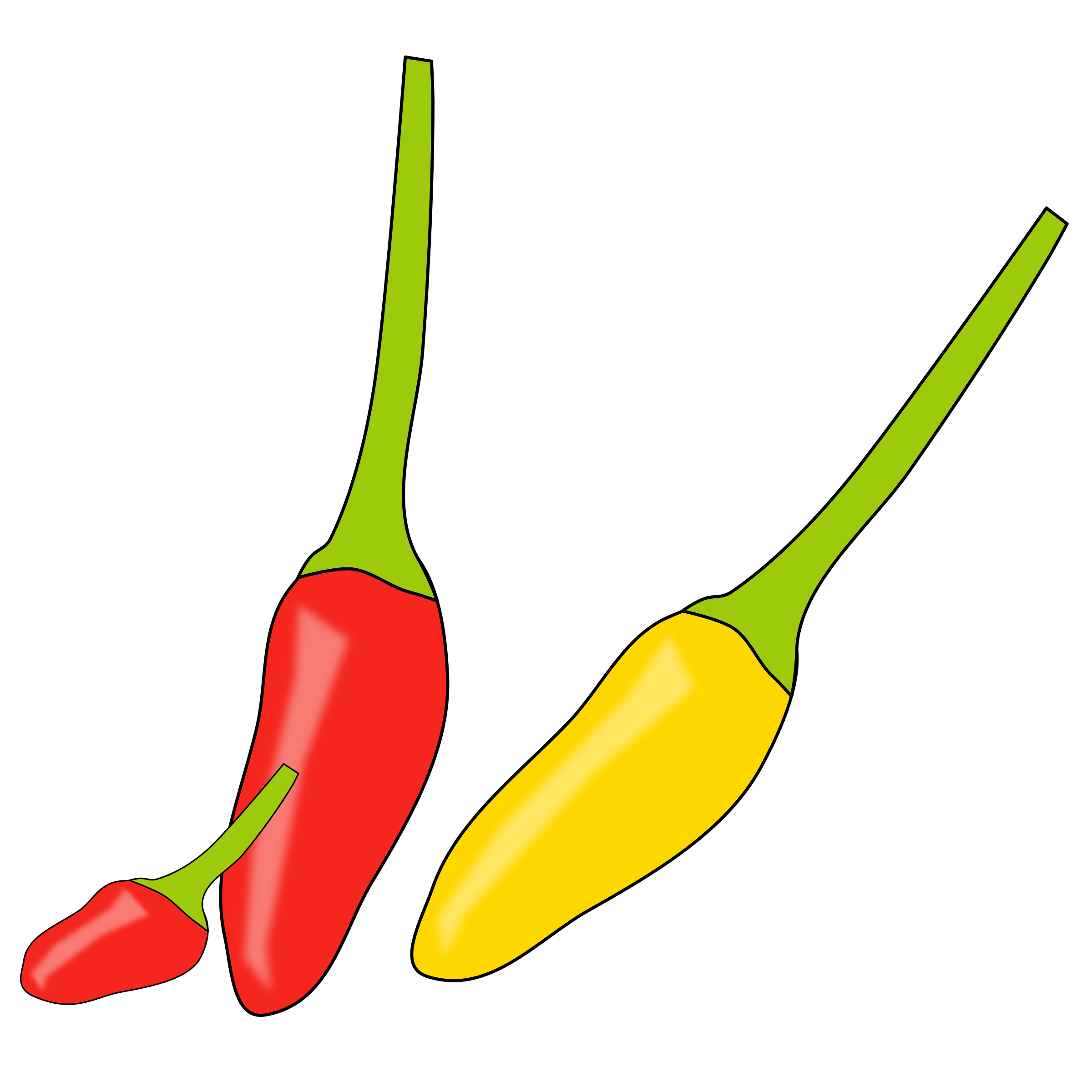 chilli by poonsab
