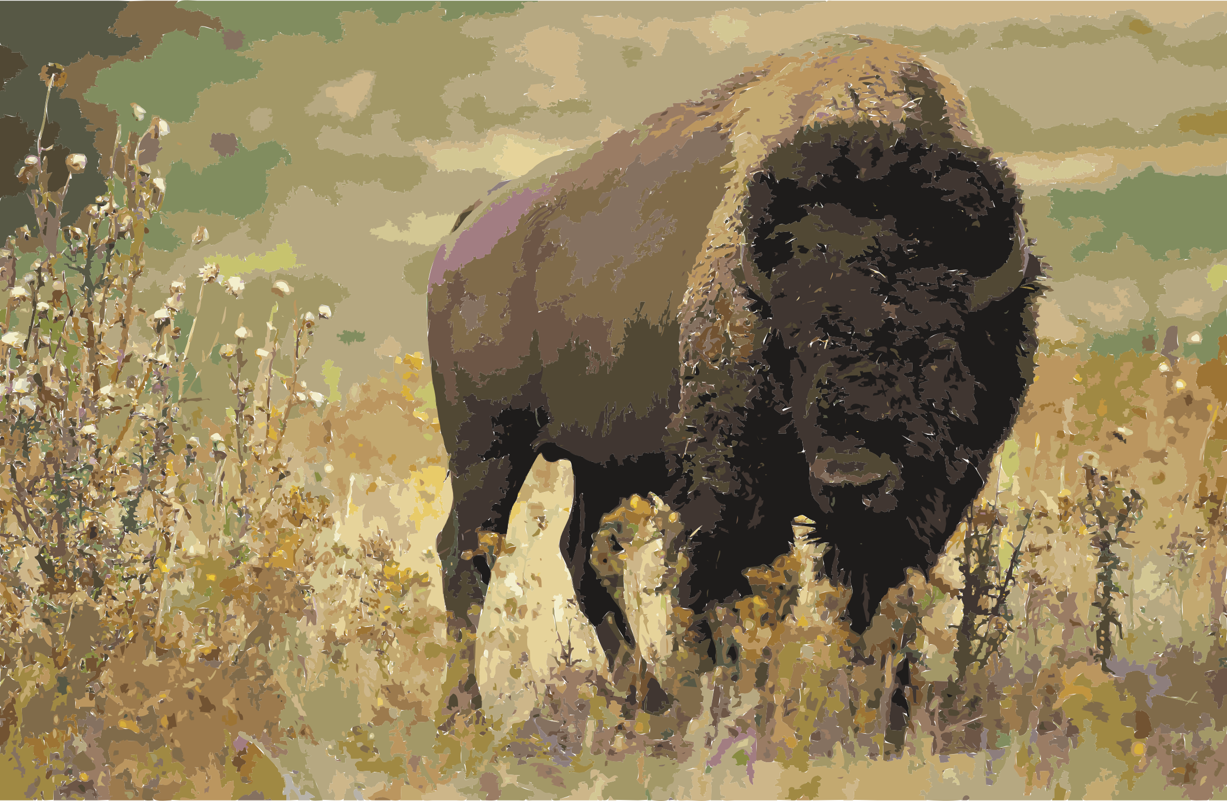 American bison k5680-1 by 3w8x8j+ekad9if2mkux4