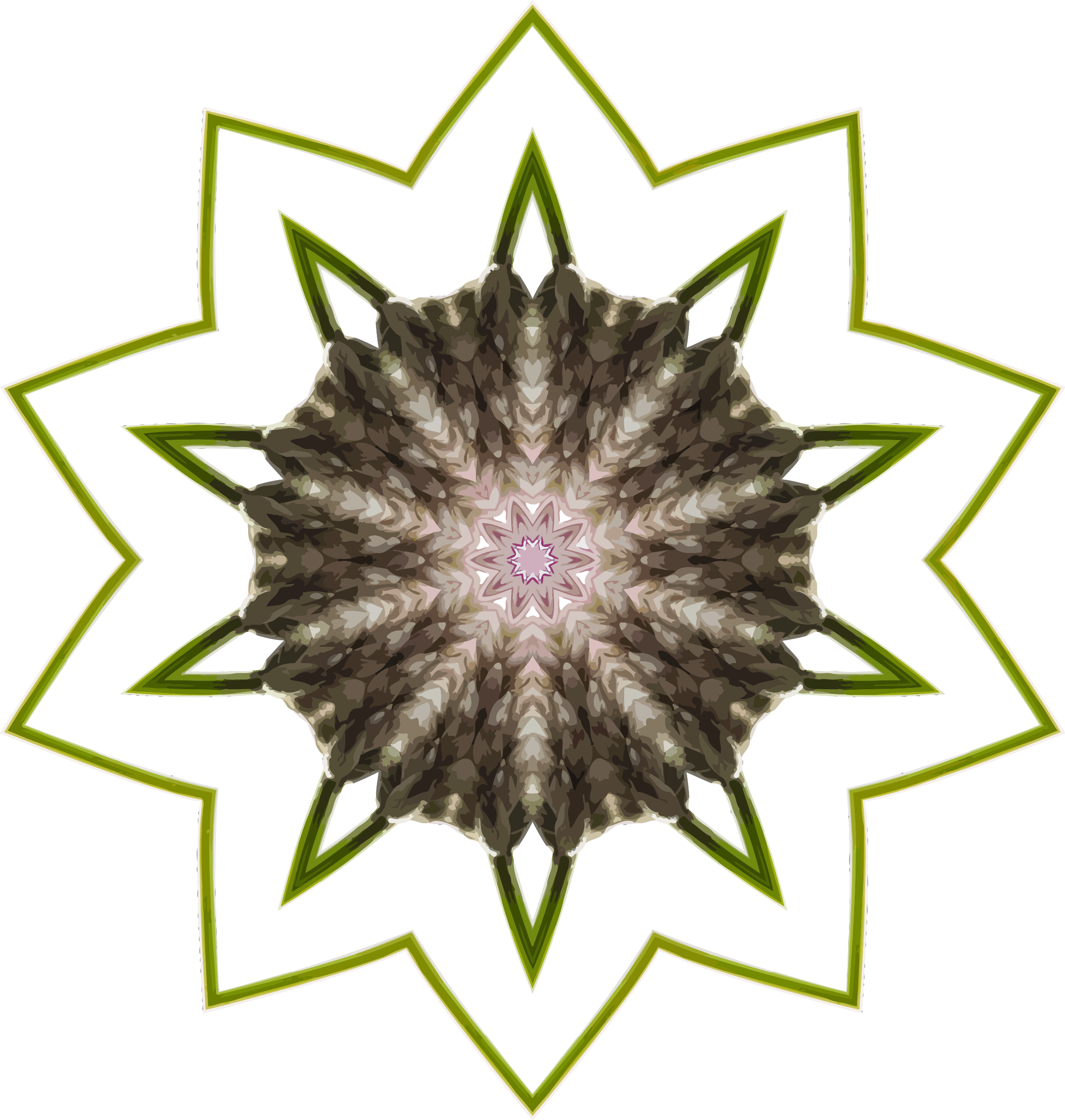 Wildflower kaleidoscope 9 by Firkin