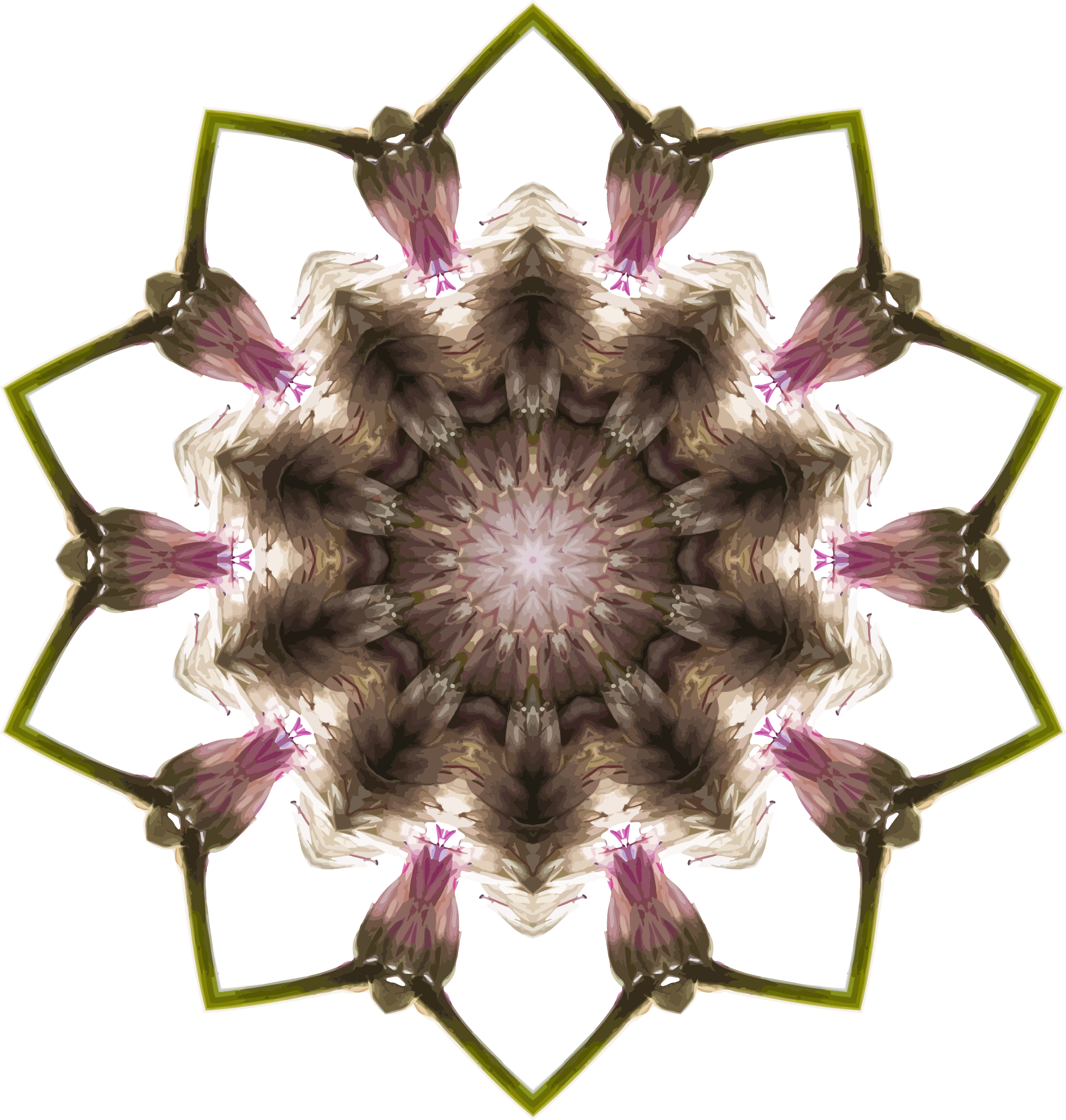 Wildflower kaleidoscope 8 by Firkin