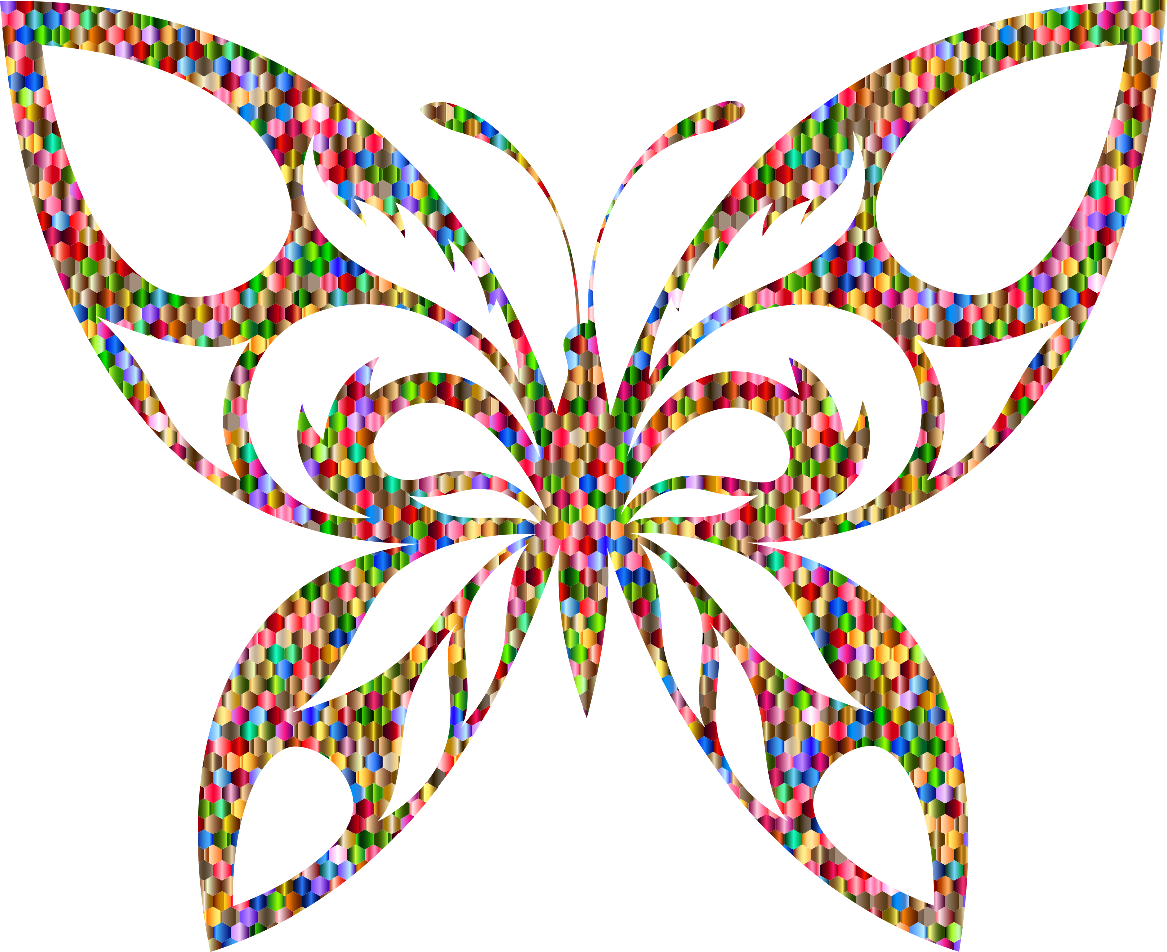 Vibrant Chromatic Hexagonal Tribal Butterfly Silhouette by GDJ