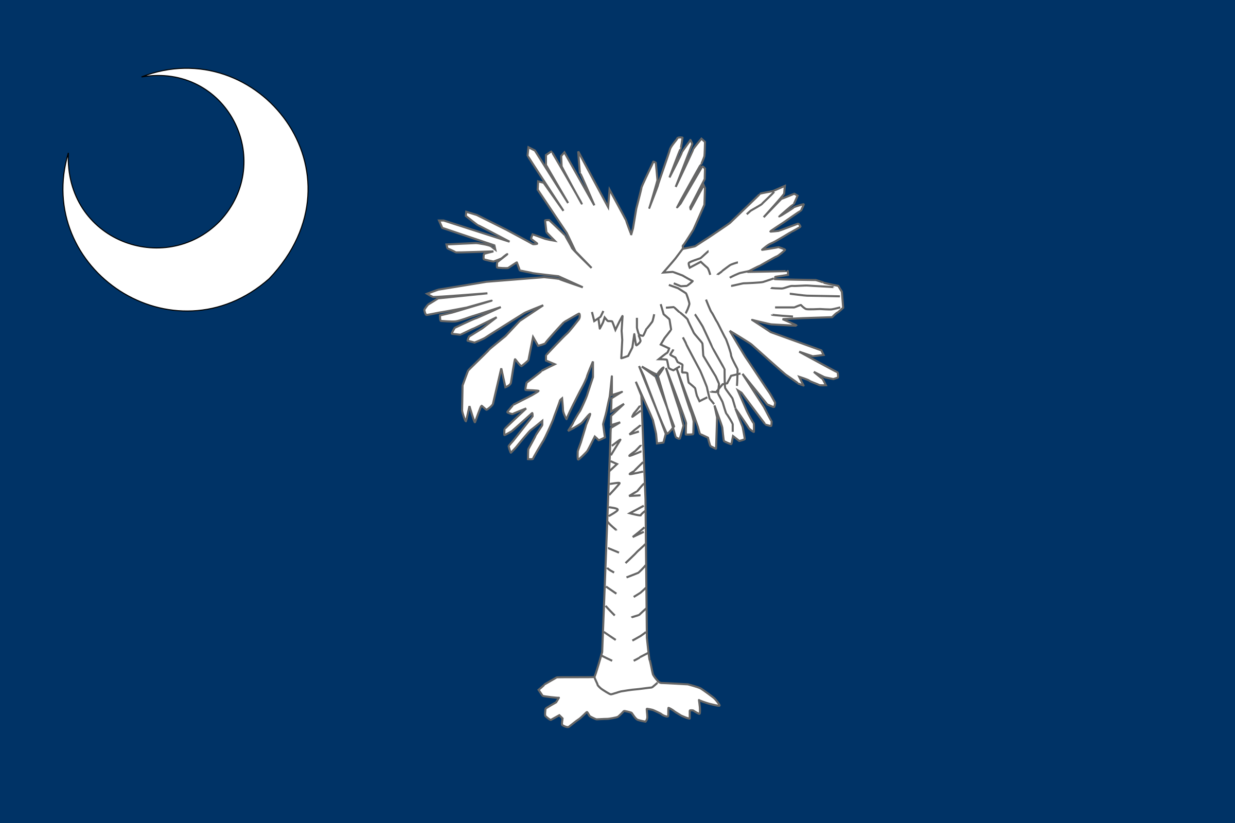 Flag of South Carolina by Anonymous