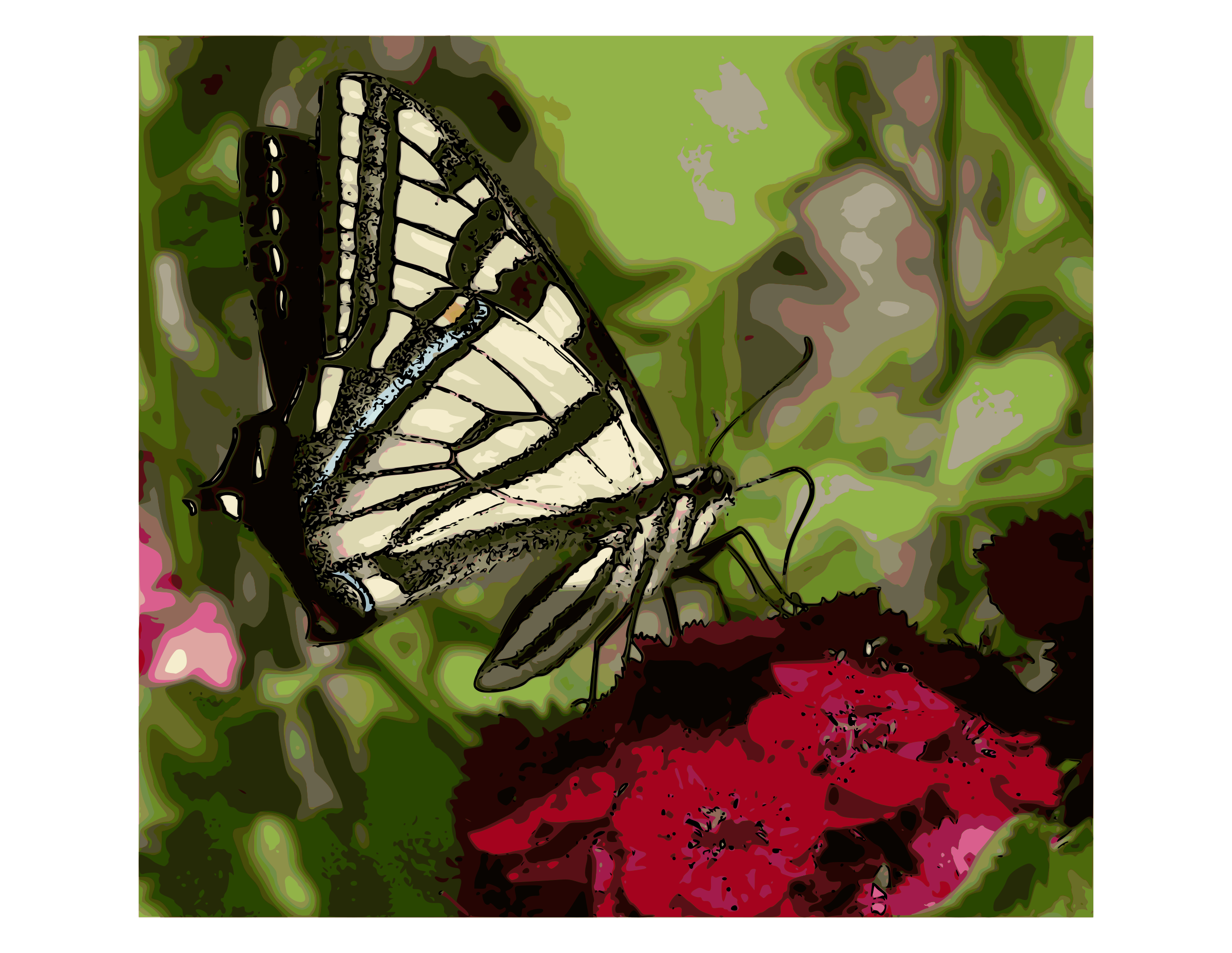 Western Tiger Swallowtail Butterfly - Enhanced color by Rambo Tribble