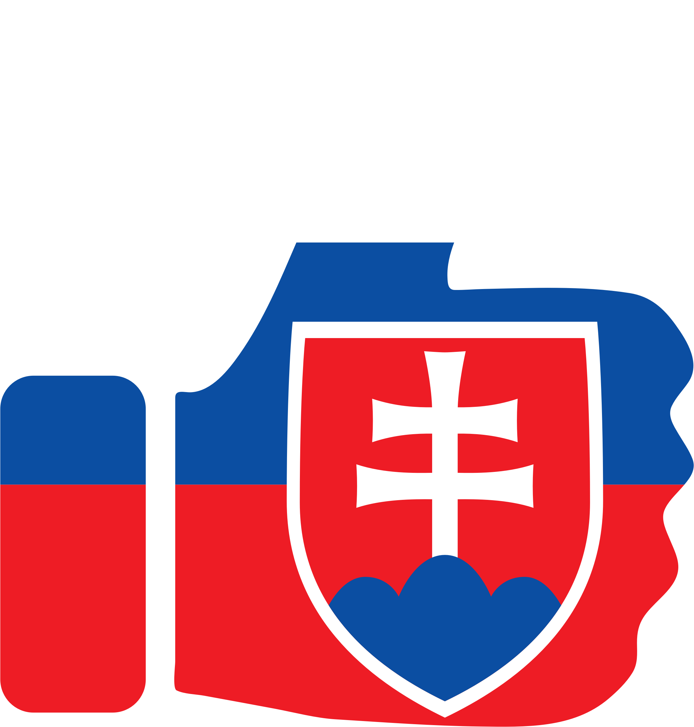 Thumbs Up Slovakia by GDJ