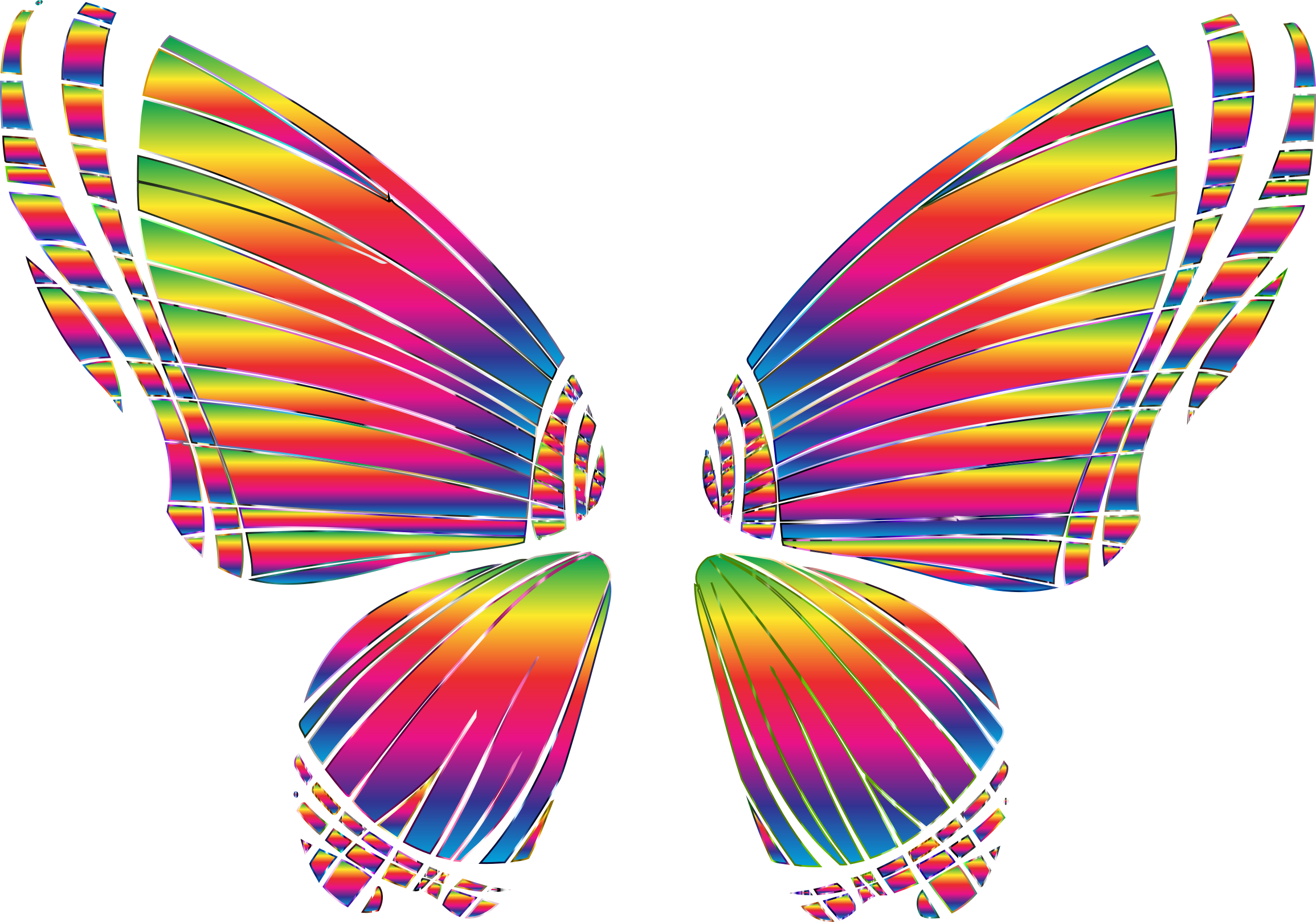 RGB Butterfly Silhouette 10 8 No Background by GDJ